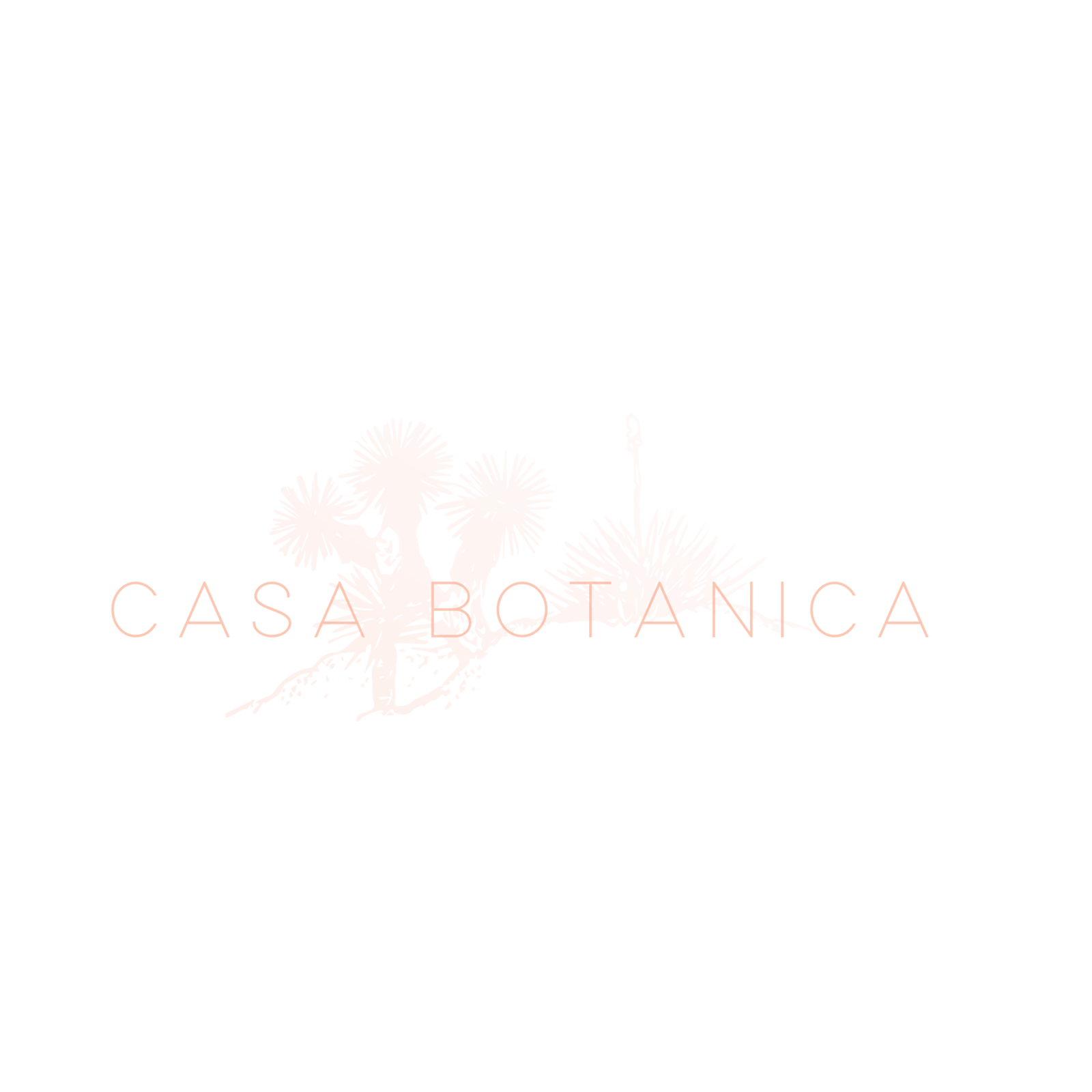 Casa-Botanica-Alternate-Logo