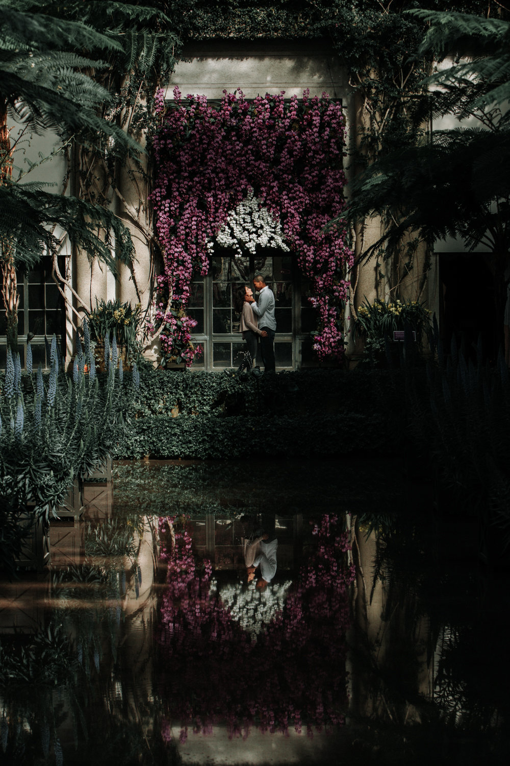 engagement portrait at longwood gardens