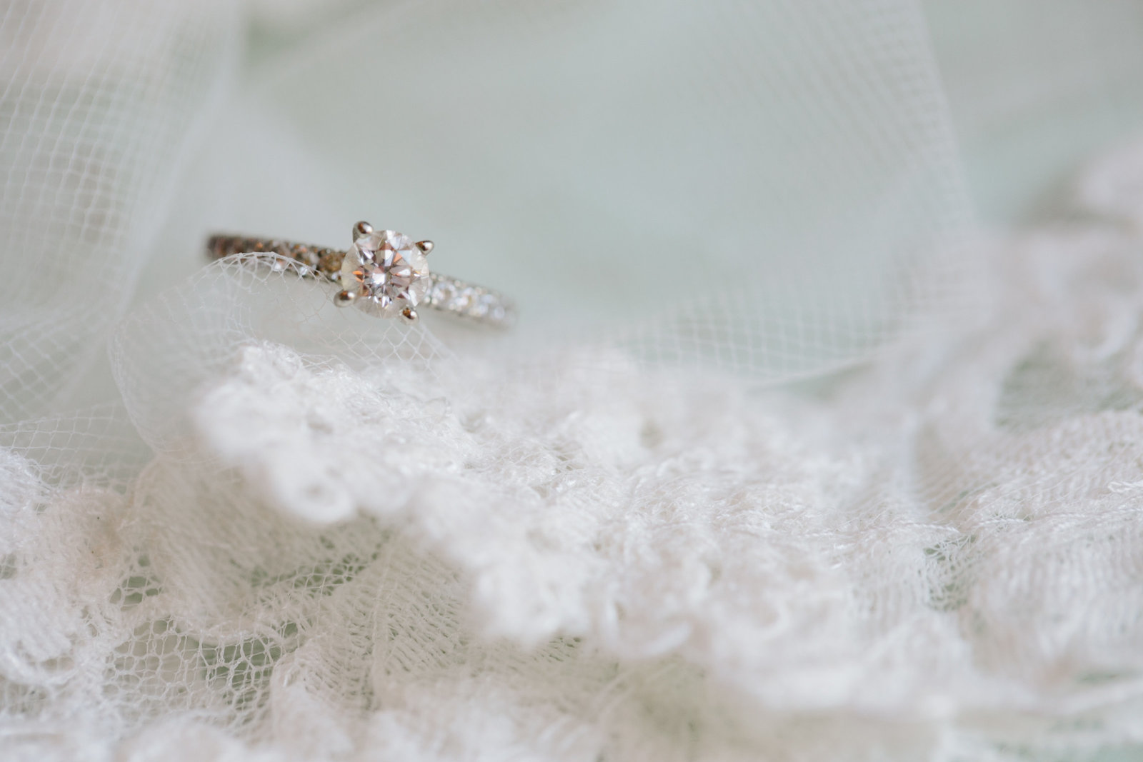 Wedding Portfolio 42