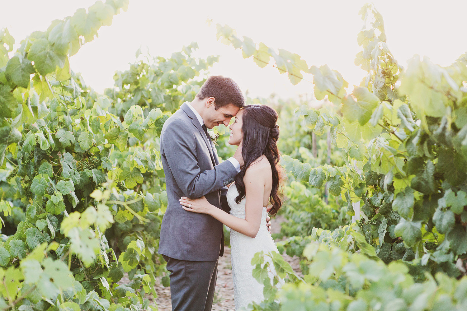 Orange county wedding day bride and groom in vineyard