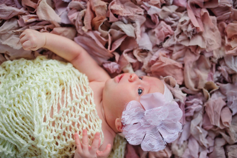 South Florida newborn photography 00078