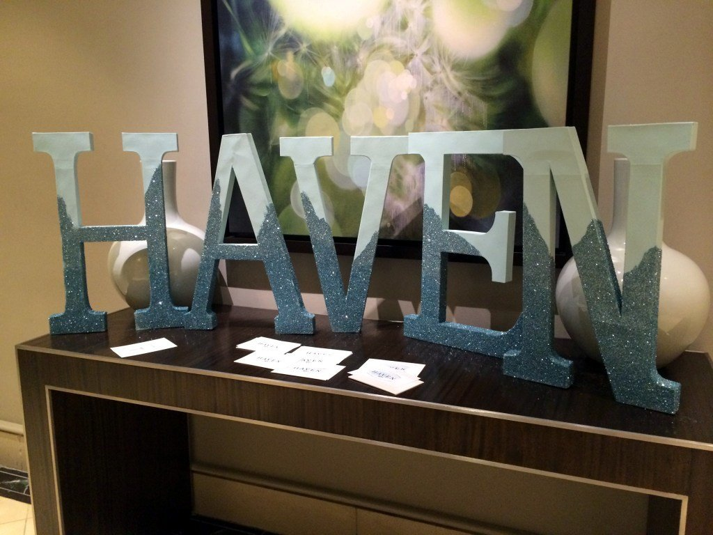 haven_conference_2015_review-23