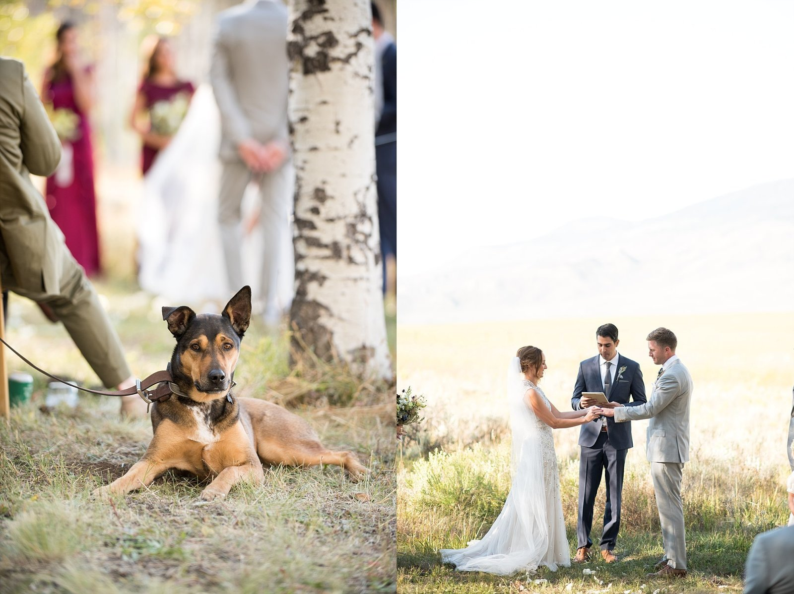 Elizabeth Ann Photography, Denver Wedding Photographer, Fine Art Wedding_2057