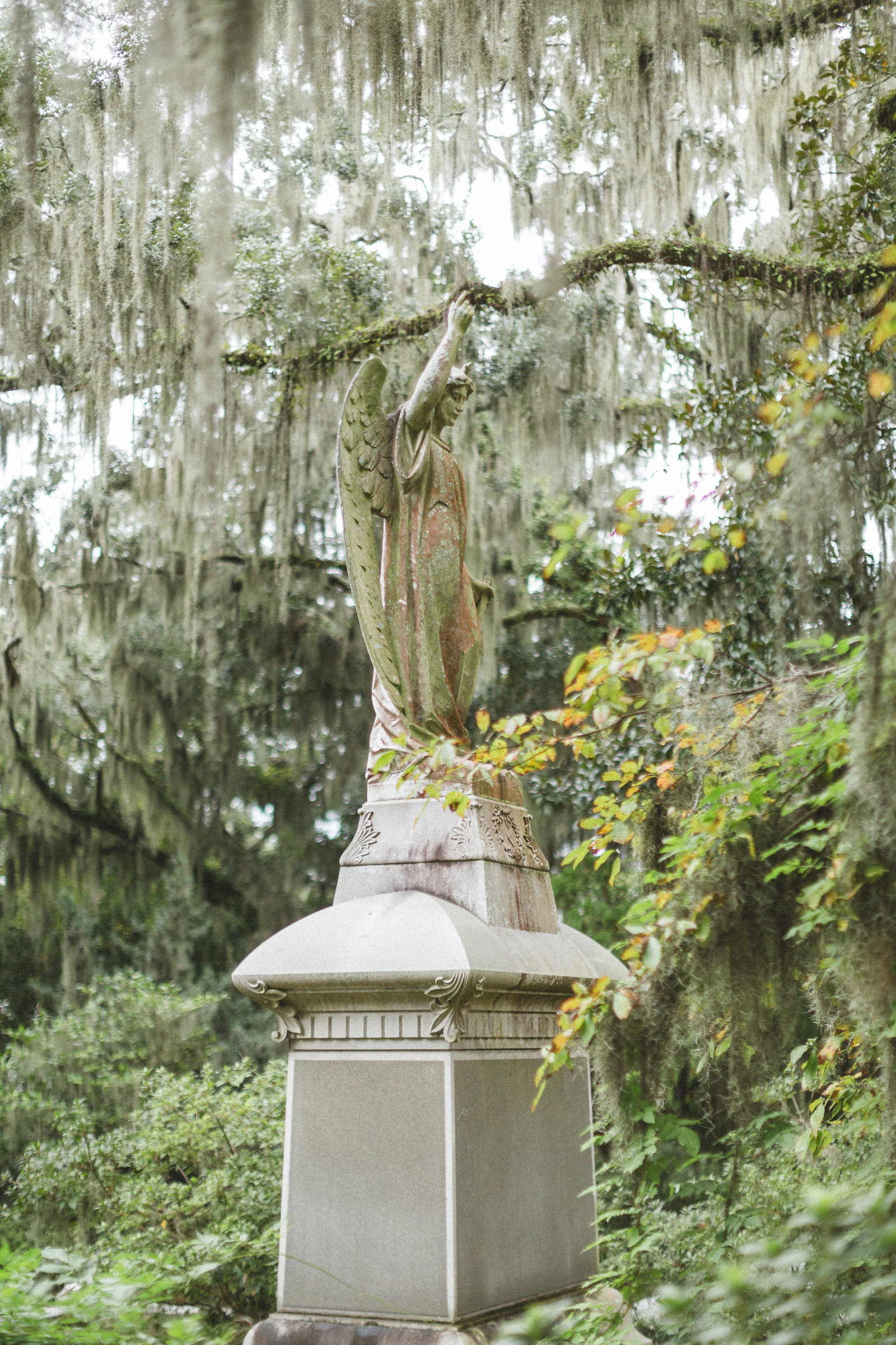 Savannah Georgia - DiBlasio Photo-2231