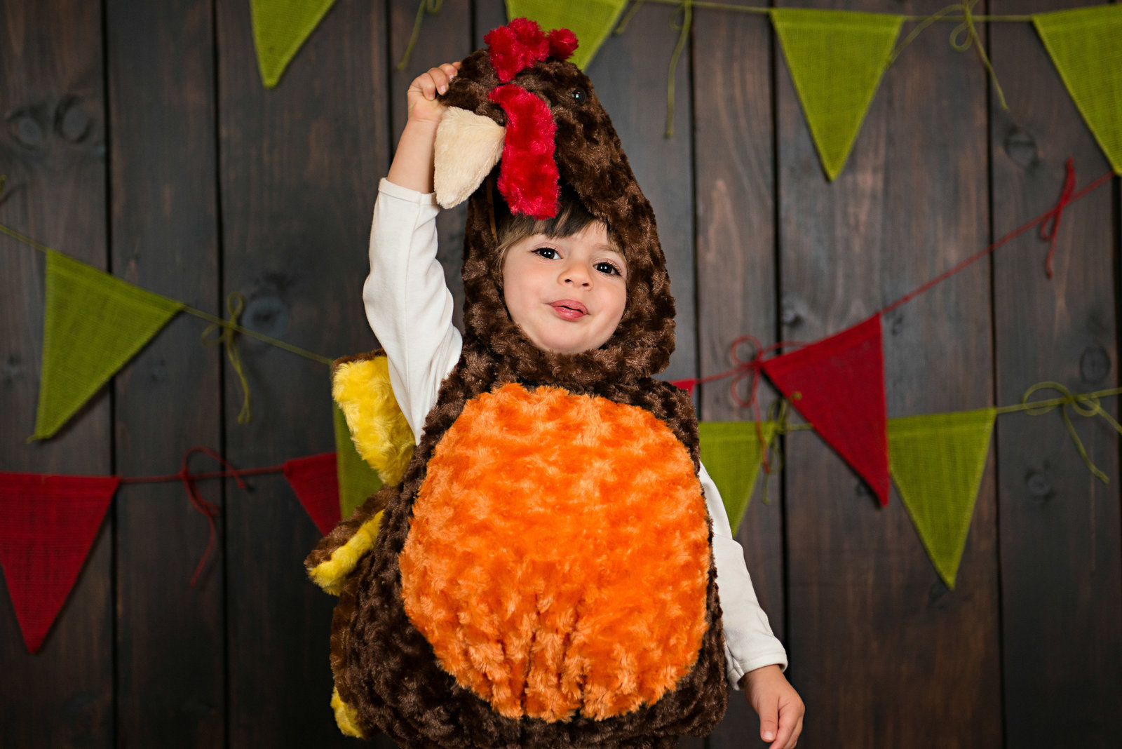 caitlin-chadwick-studios-holiday-mini-portrait-beautiful-brunette-brown-eyed-boy-toddler-happy-organic-woodsy-autumn-colors-turkey-costume_0001-3500