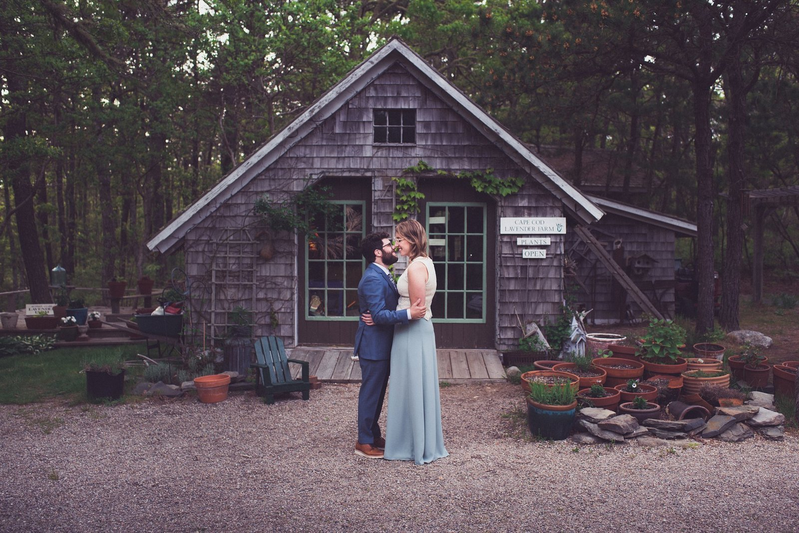 bride and groom at the cape cod lavender farm