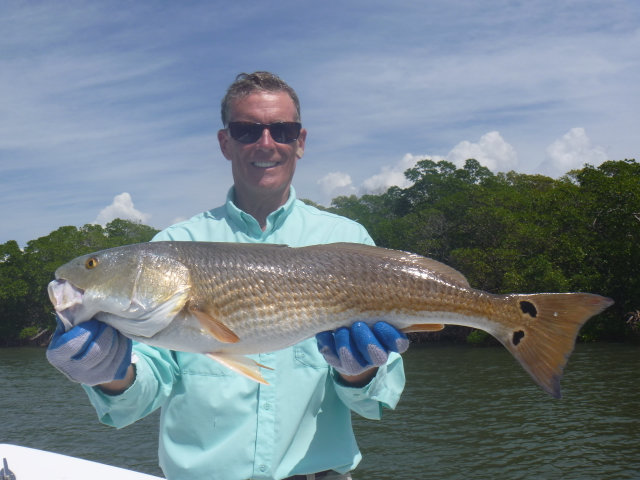 redfish photo