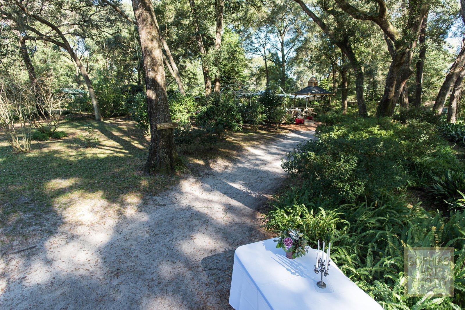 harmony-gardens-fl-wedding-haly-and-william-1089