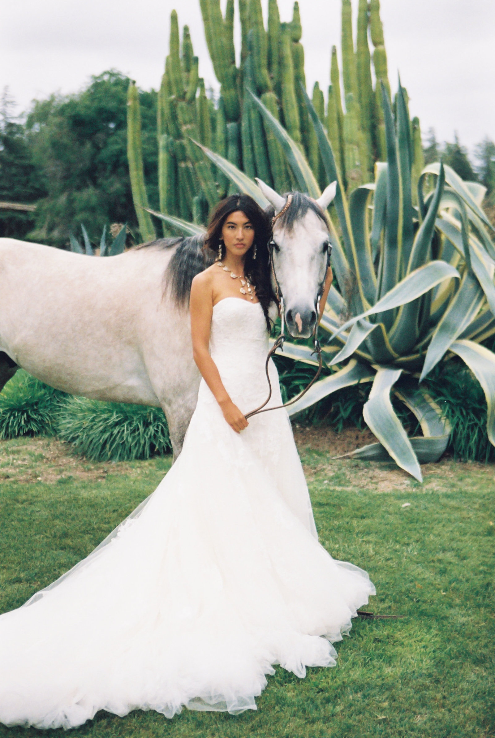 Christianne_taylor_Weddings_ranch_equestrian_quarterly_samples-2
