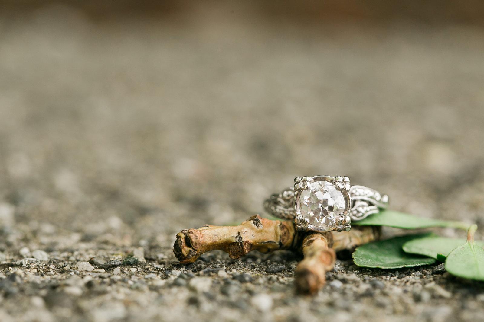 allie-jordan-engagement-photos455420