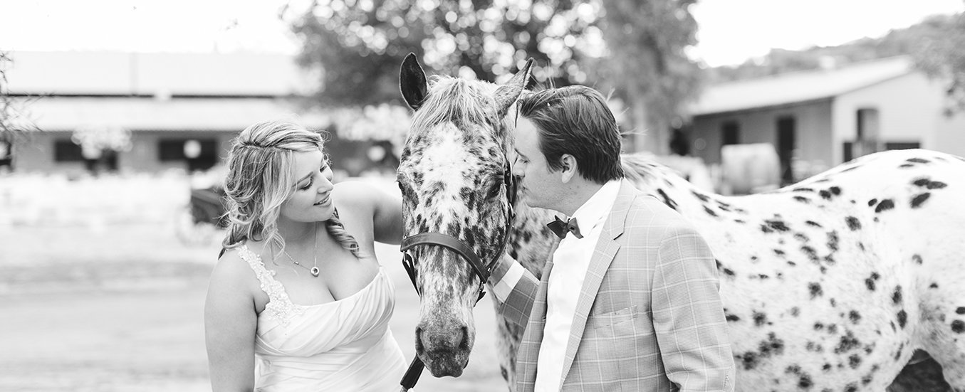equestrian-wedding-south-africa