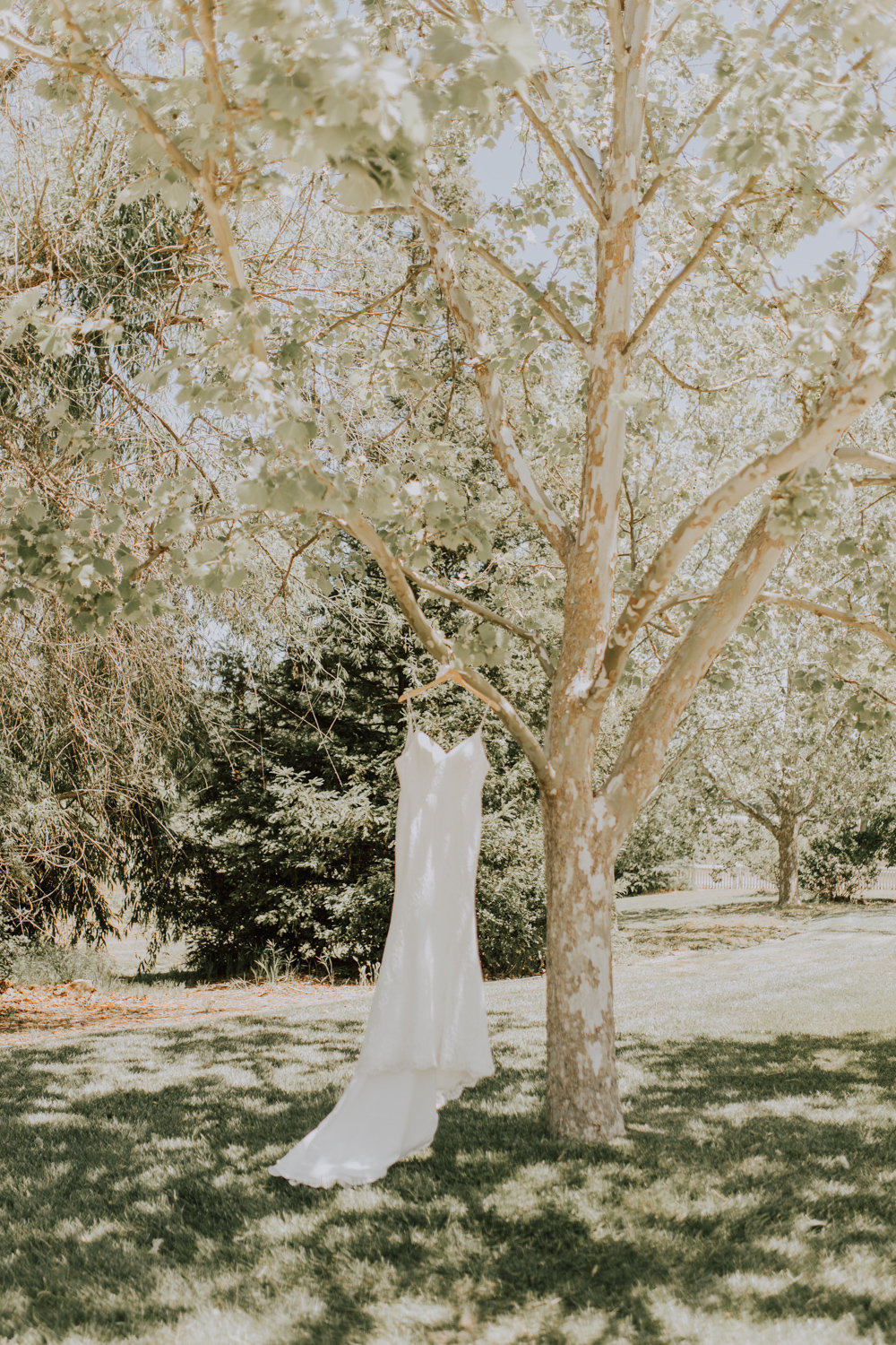 Brianna Broyles_Grace Maralyn Estate_San Luis Obispo Wedding Photographer-8