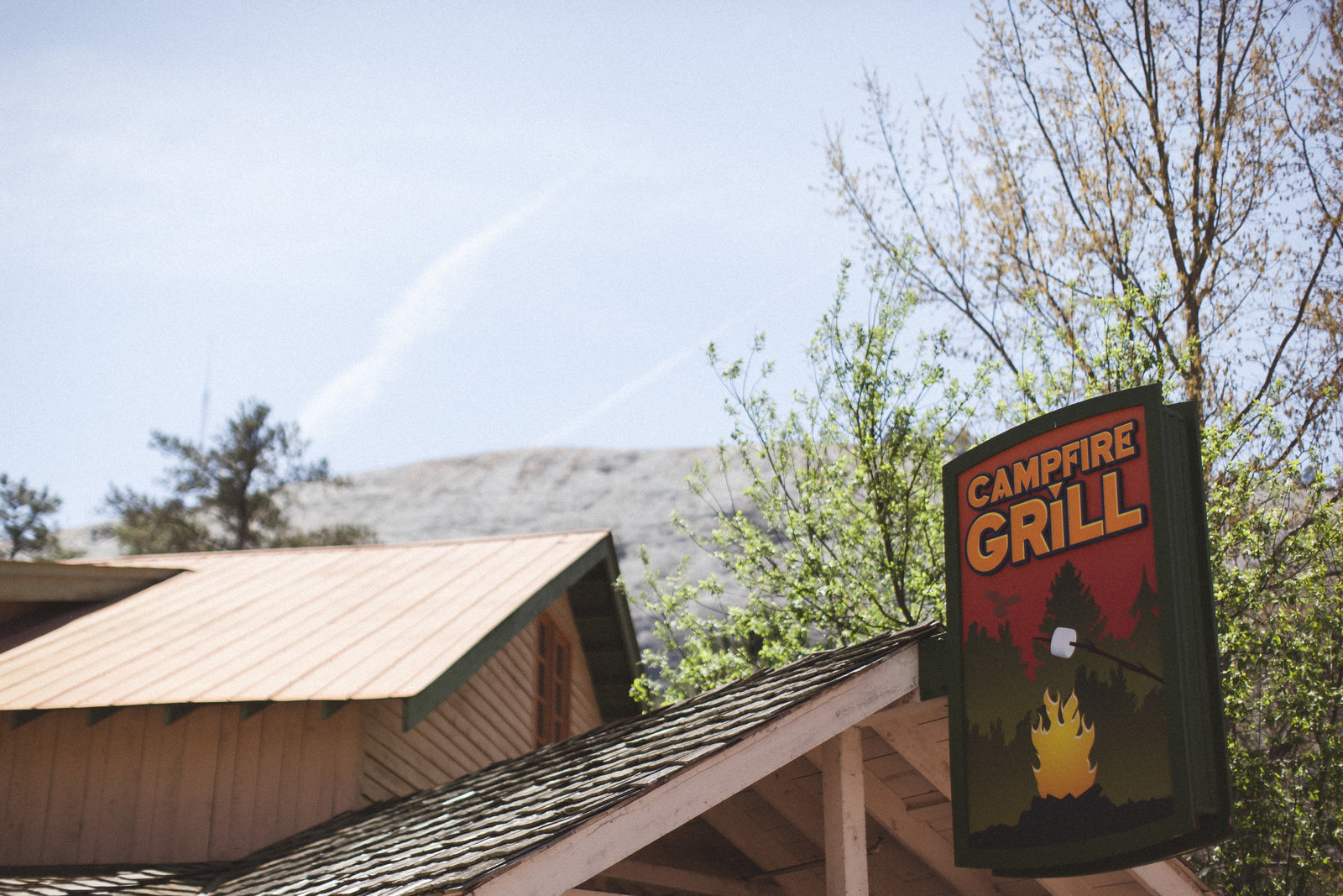 Stone Mountain Georgia - DiBlasio Photo-9209
