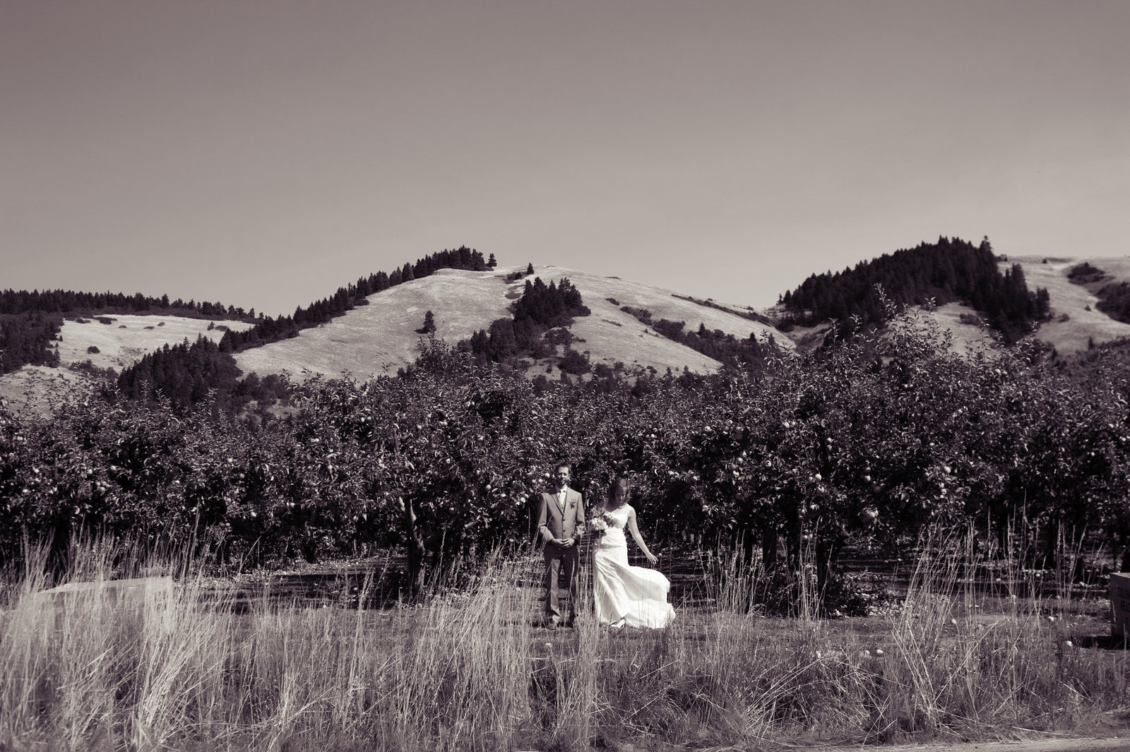 bride and groom in front of mountains