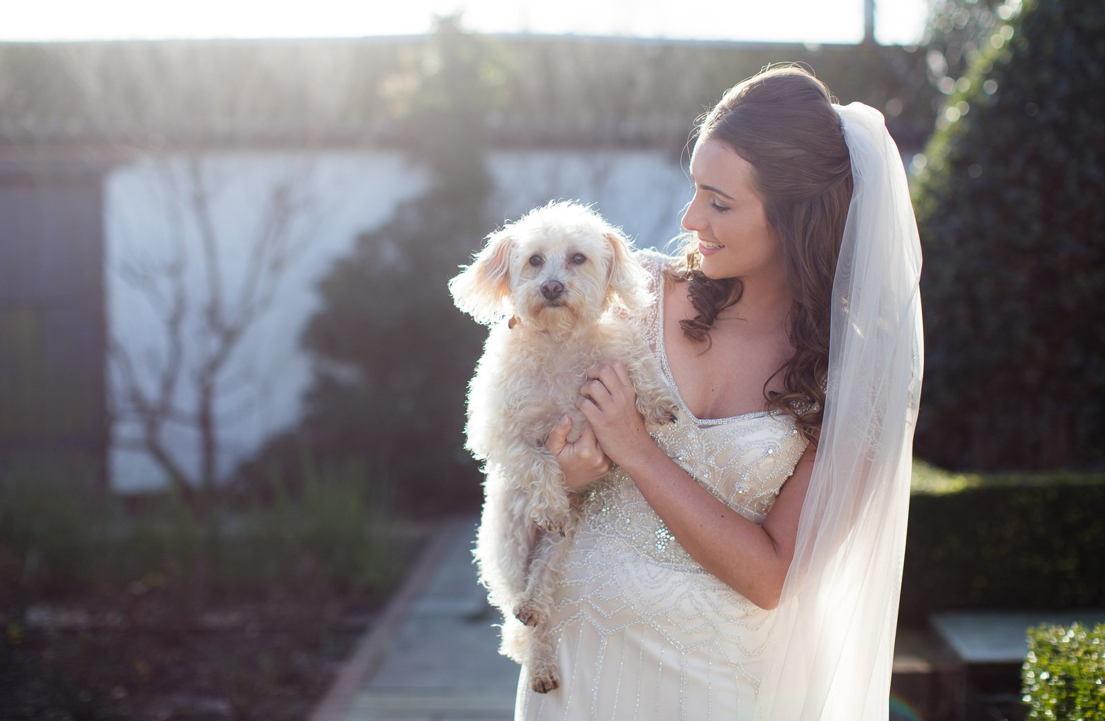 Bride holds her pet dog at her wedding at Southend Barns winter wedding, with low light and beautifully sunkissed in Jenny Packham dress