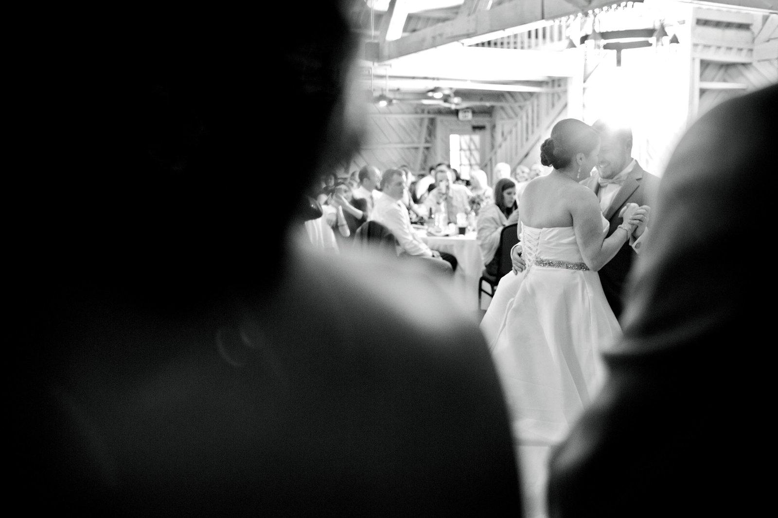 wedding portrait skyryder engagement wedding photography blacksburg roanoke charlottesville lexington radford-264