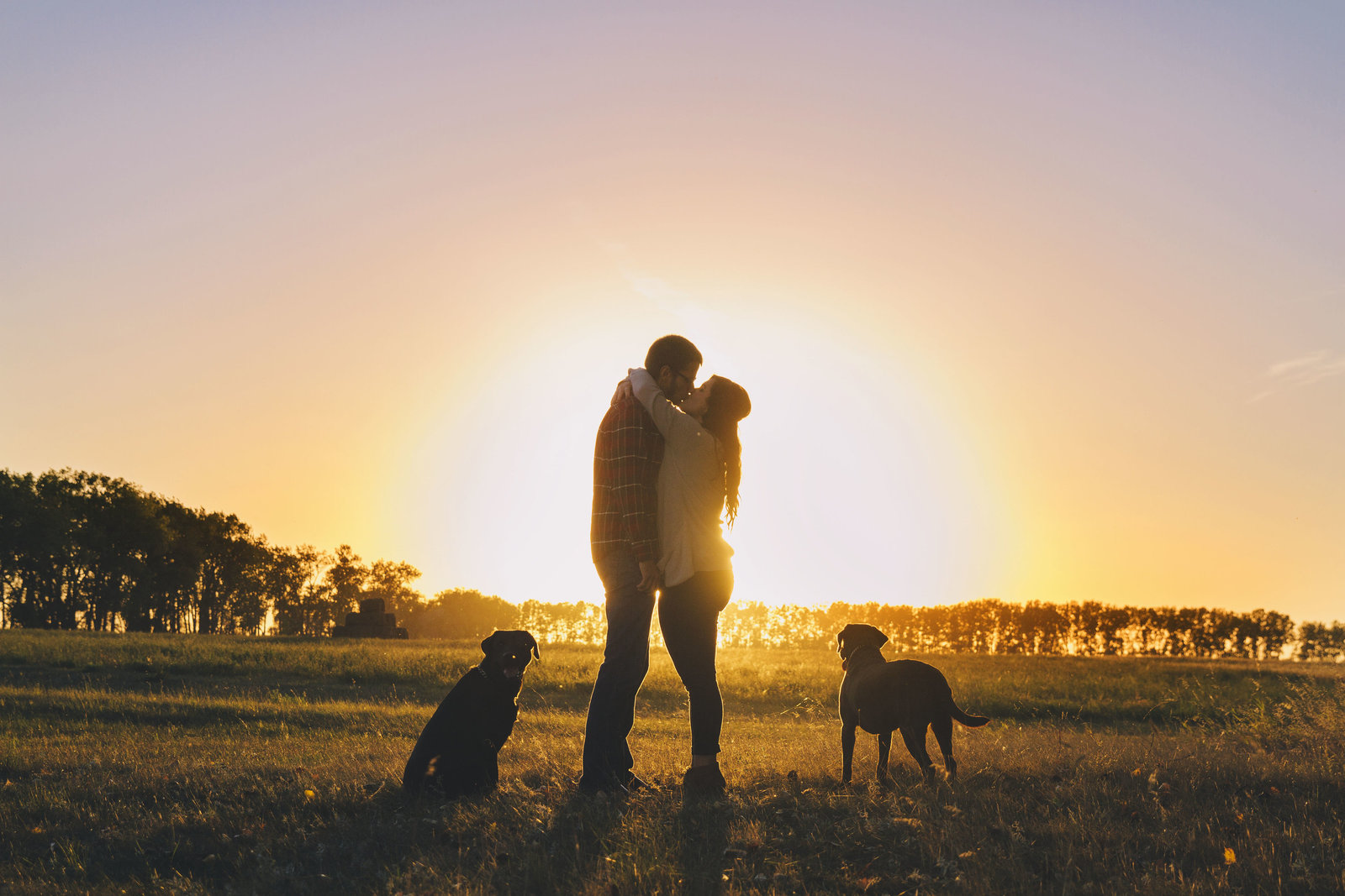 family | elizabeth street photography | silhouette | dogs | Tappen, ND