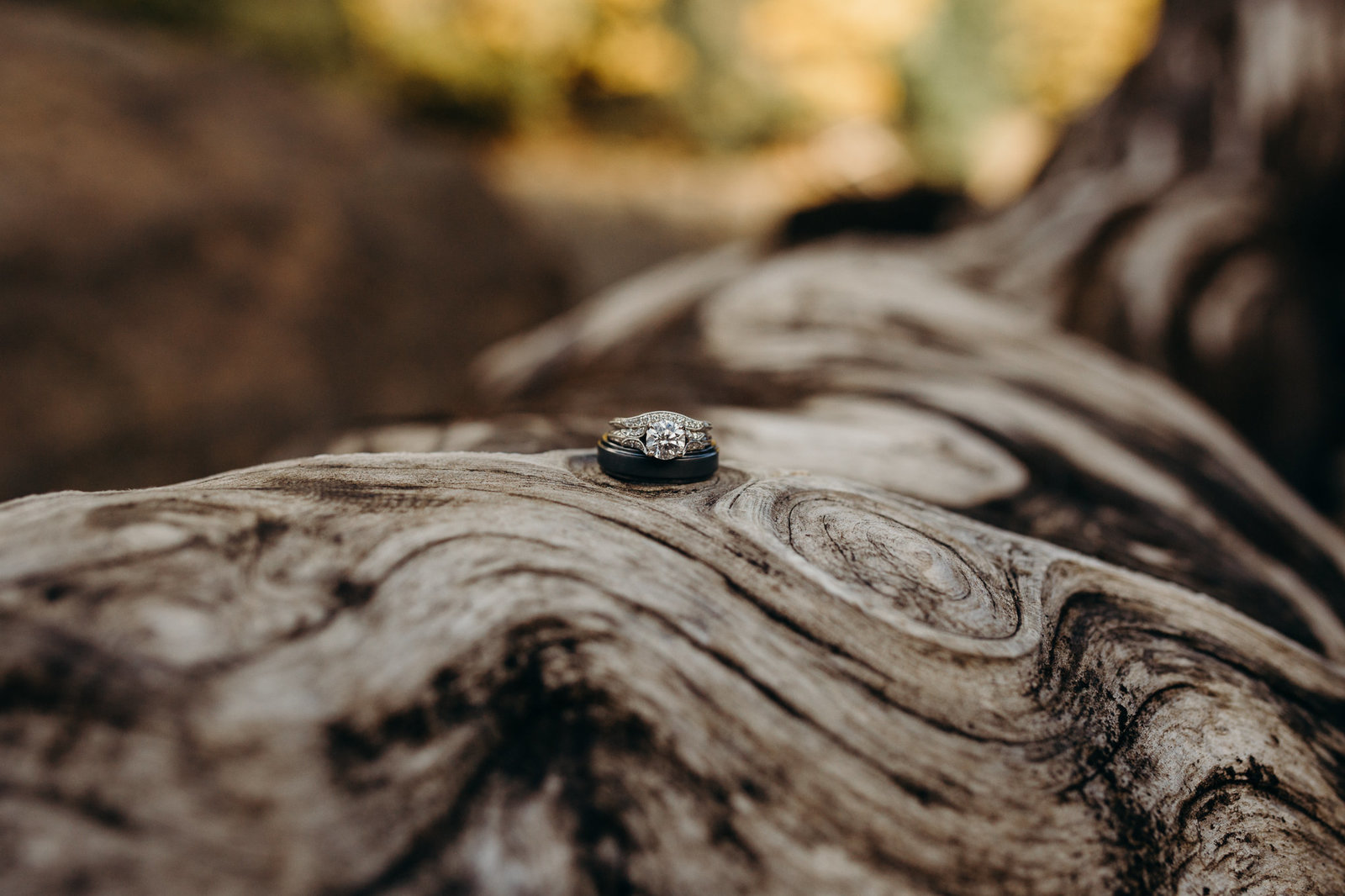 lakecushmphoenixweddingphotographeranelopement-4