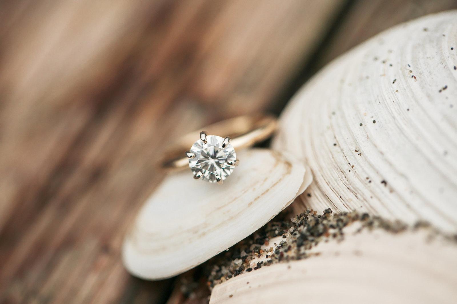 Jessica-Wesley-engagement-photos113