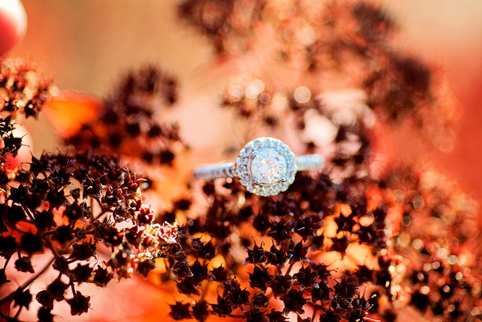 Engagement-366