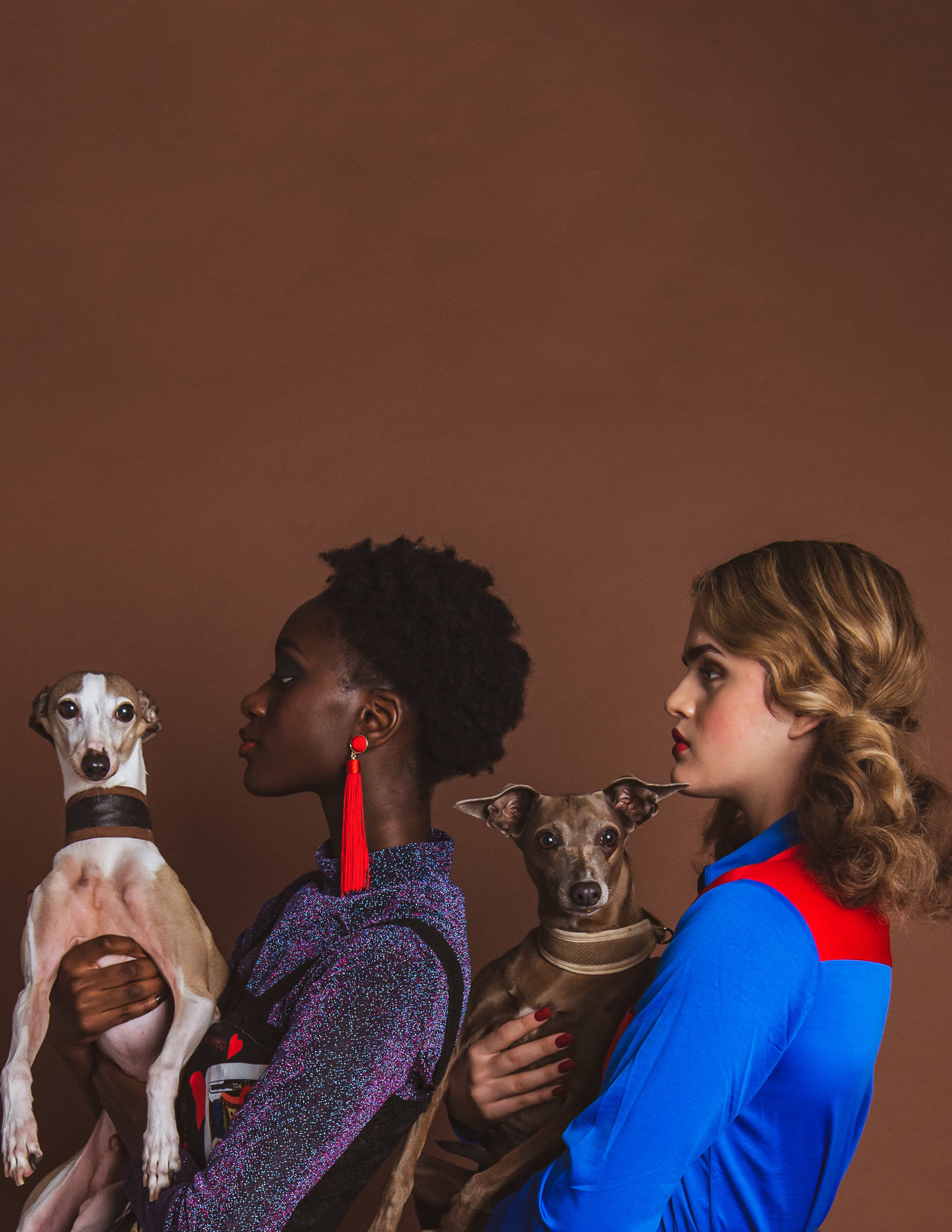 Dog-Fashion-Editorial-by-Brittany-Gawley-Photography-Westboro-Studio-21