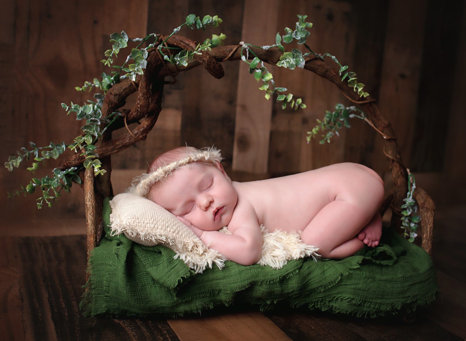 Missoula Montana Newborn Photographer Hamilton Montana Newborn Photographer