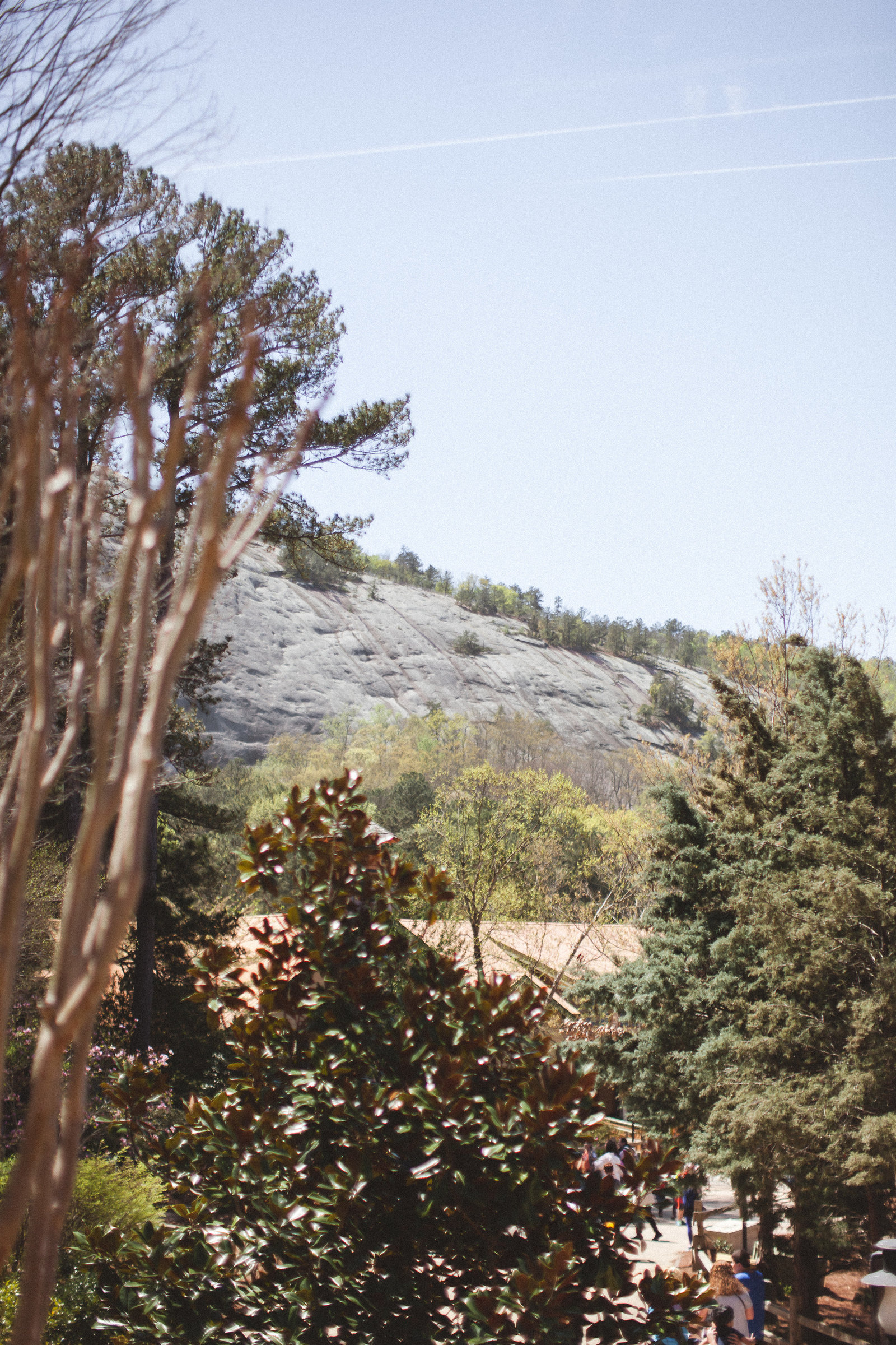 Stone Mountain Georgia - DiBlasio Photo-9207