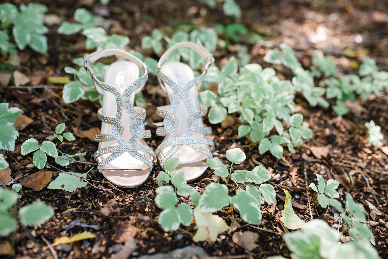 silver wedding shoes, Catamount Country Club wedding, Vermont wedding