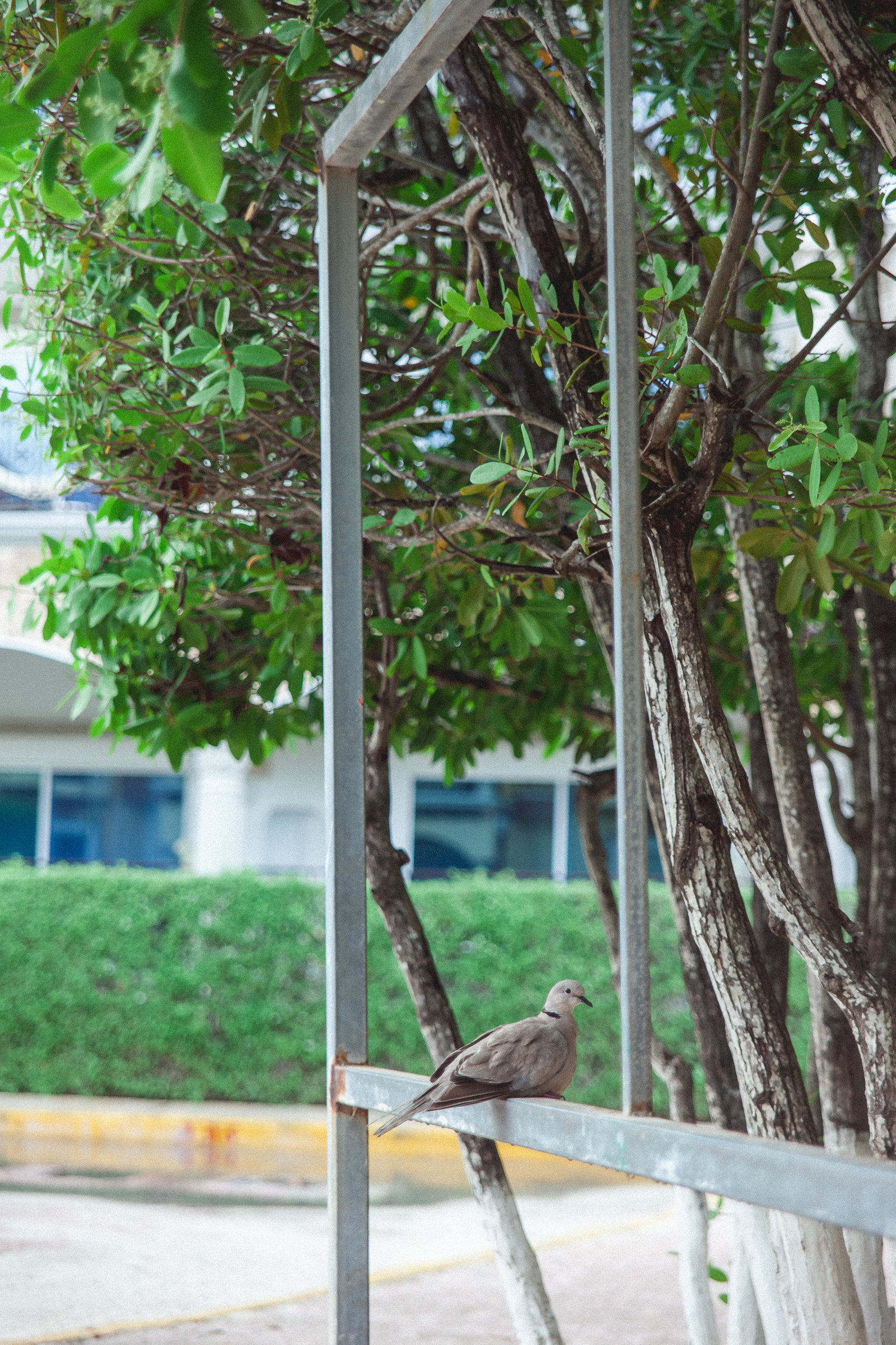DiBlasio Photo-Mexico-9905