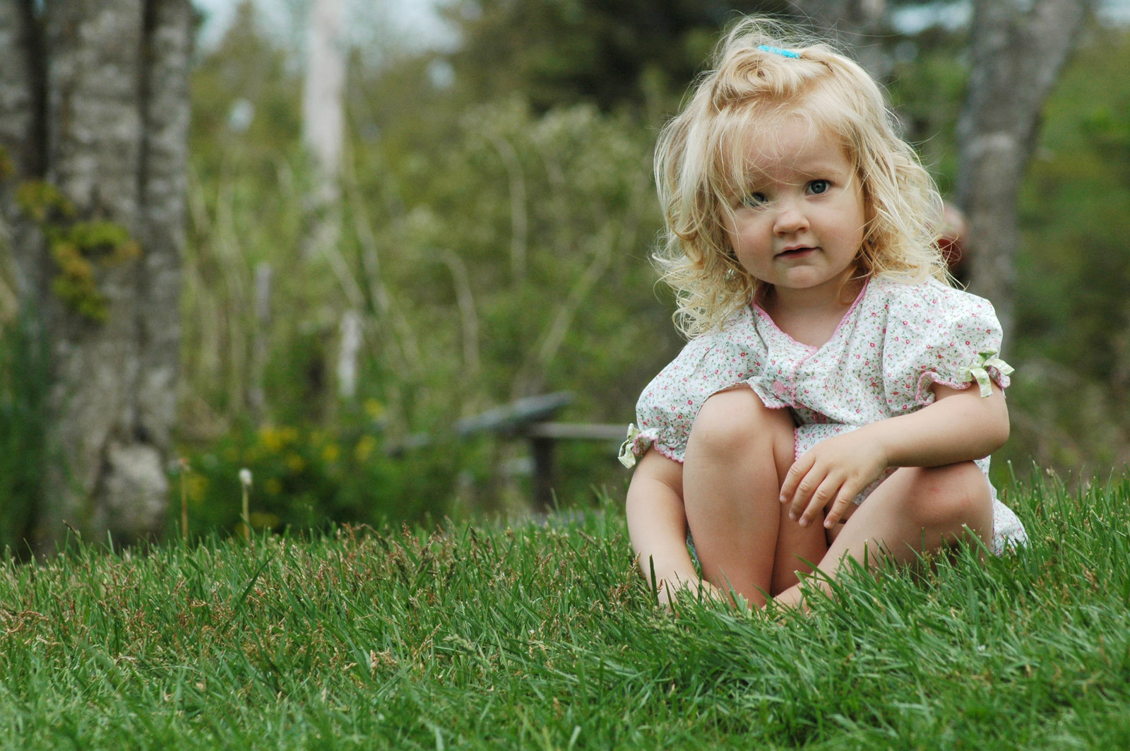 RJ Earle little girl in grass Nova Scotia Portraits by Melissa E Earle  Mee
