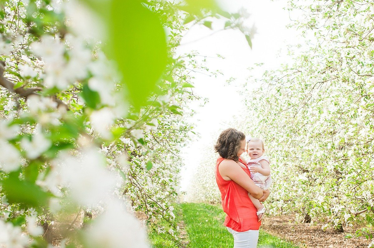 Laura Luft Family Photographer Lifestyle appple blossoms Photography Elba NY  Western NY fall family lifestyle-83