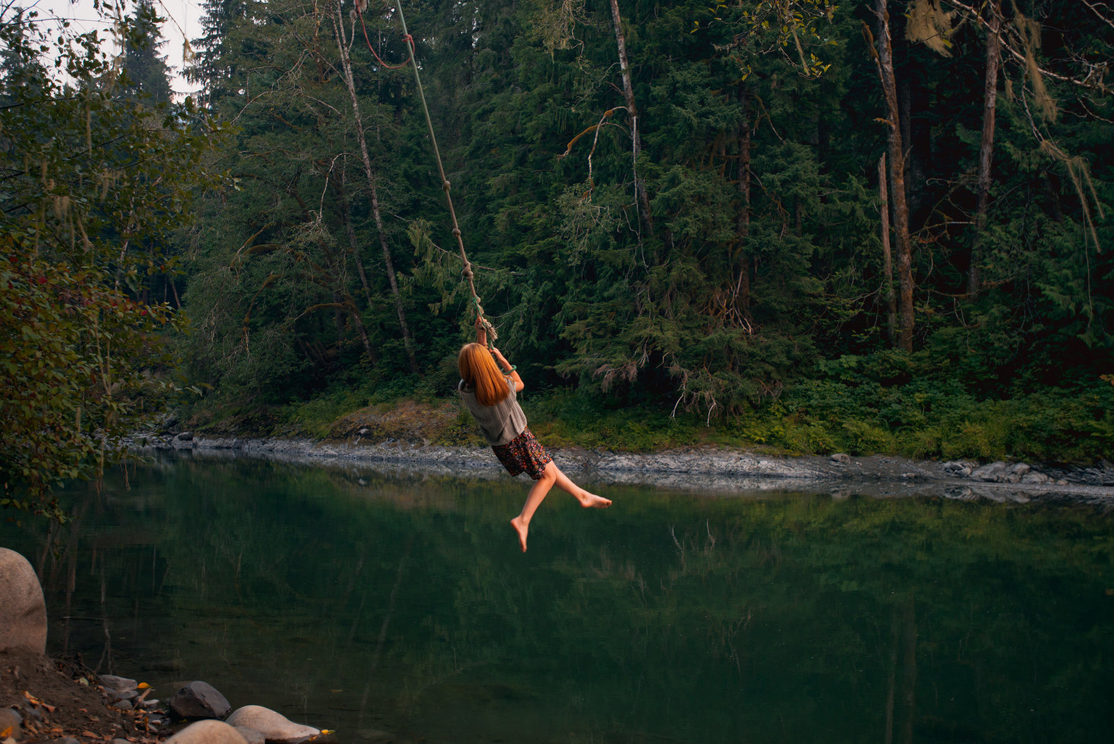 rope swing photo in washington state national forest