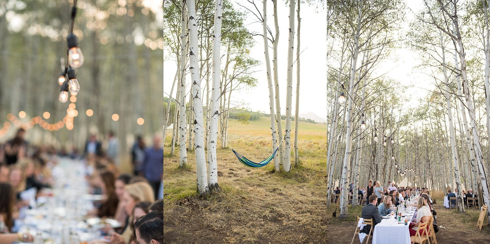 Elizabeth Ann Photography, Denver Wedding Photographer, Fine Art Wedding_2078