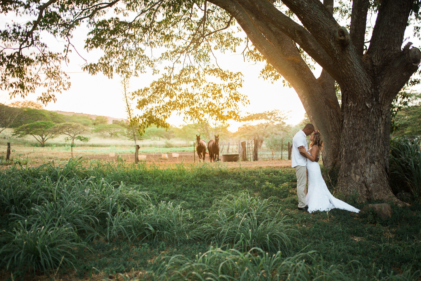 Dillingham Ranch Weddings in Hawaii