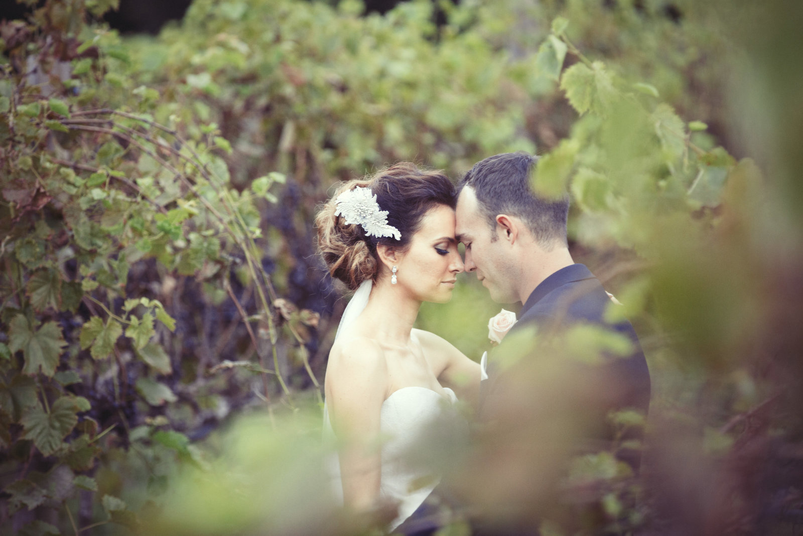 maleny manor wedding (891 of 1210)
