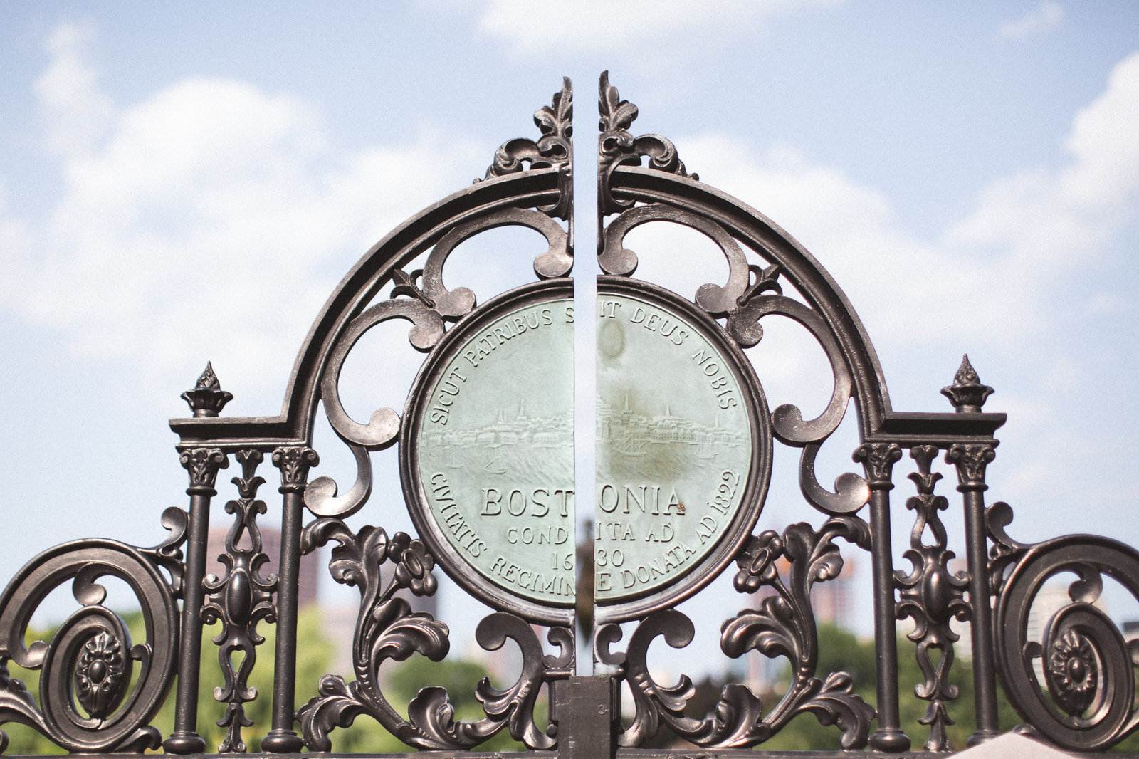 Boston MA - DiBlasio Photography-11