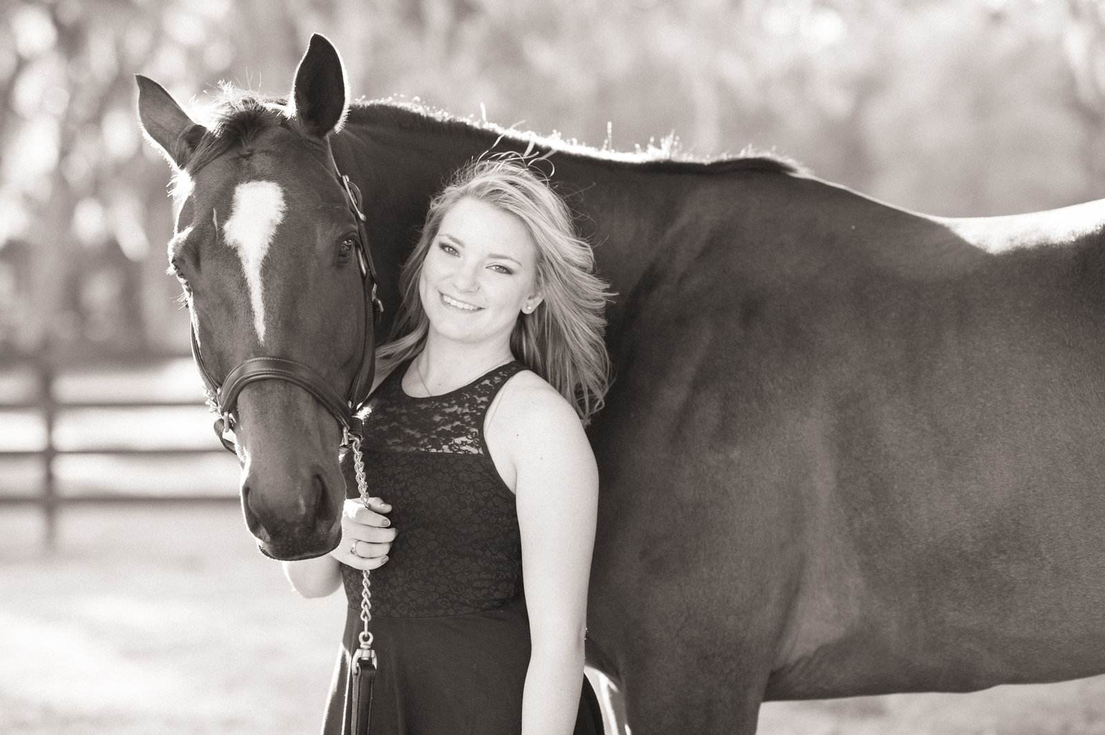 Horse Art Orlando
