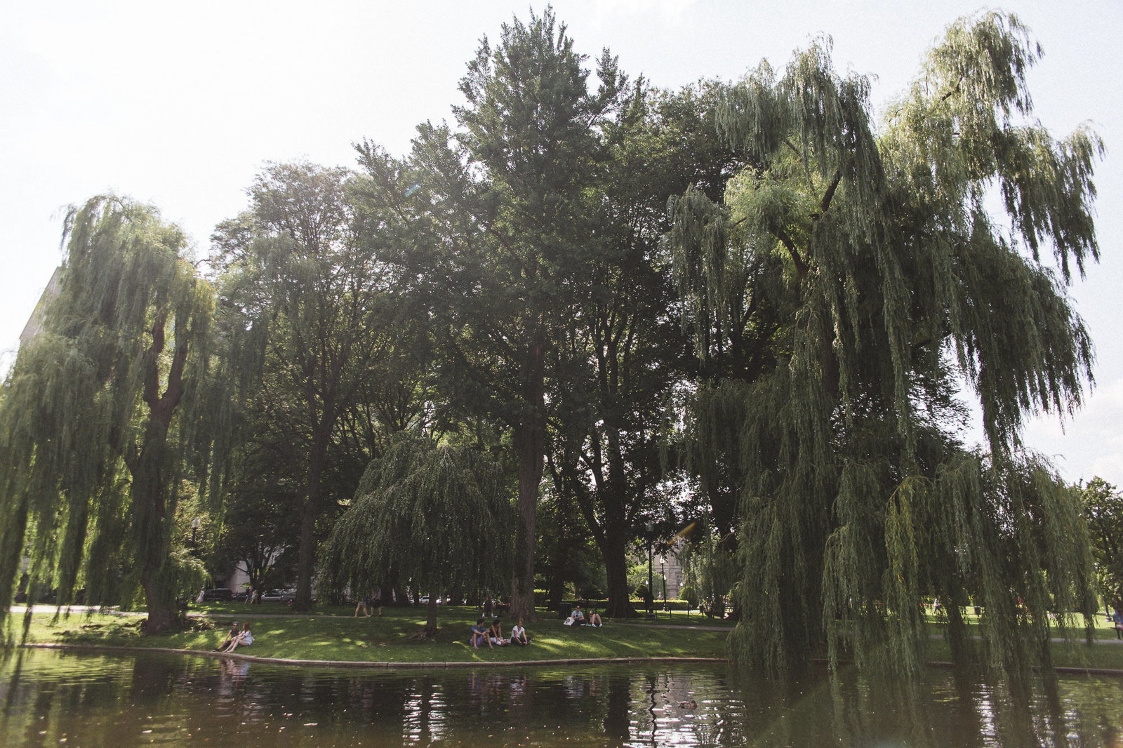Boston MA - DiBlasio Photography-3