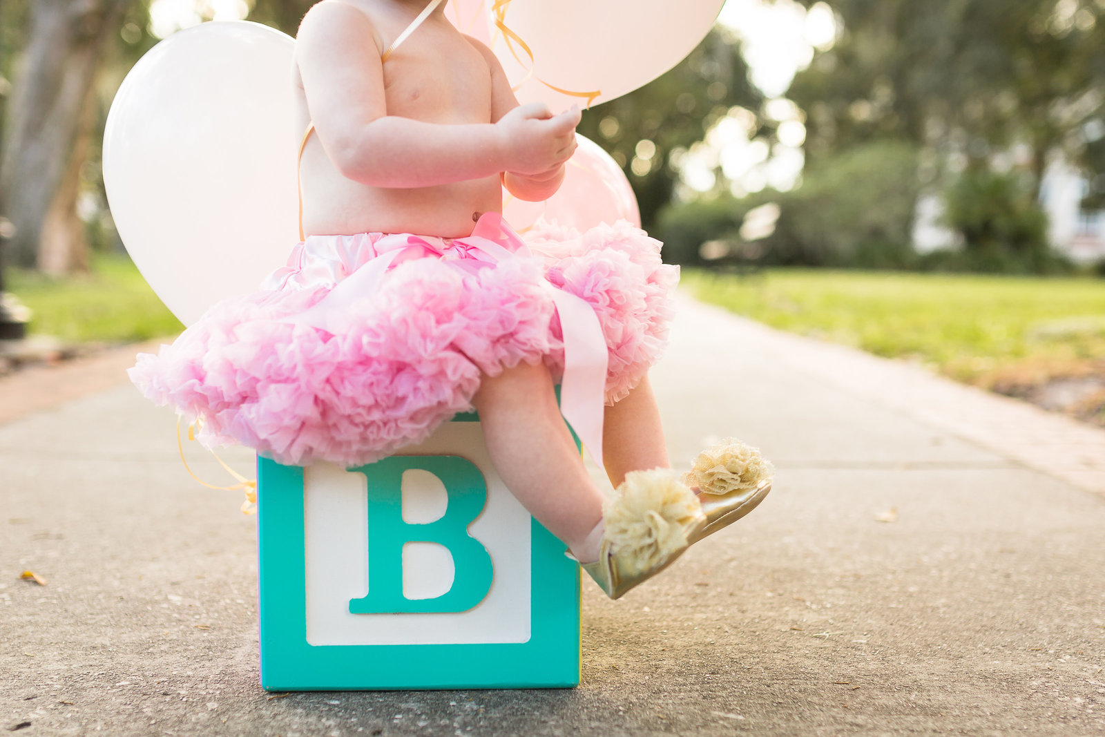 Brynlee Turns ONE 2015-Brynlee Turns ONE 2015-0019