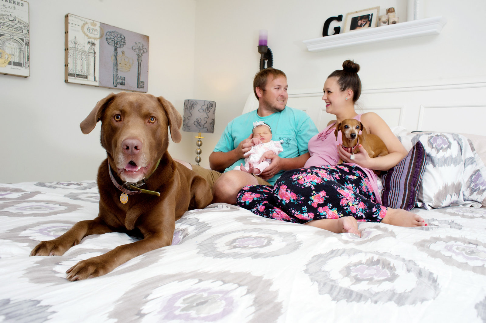 a family with a newborn baby sit on a bed with their two dogs