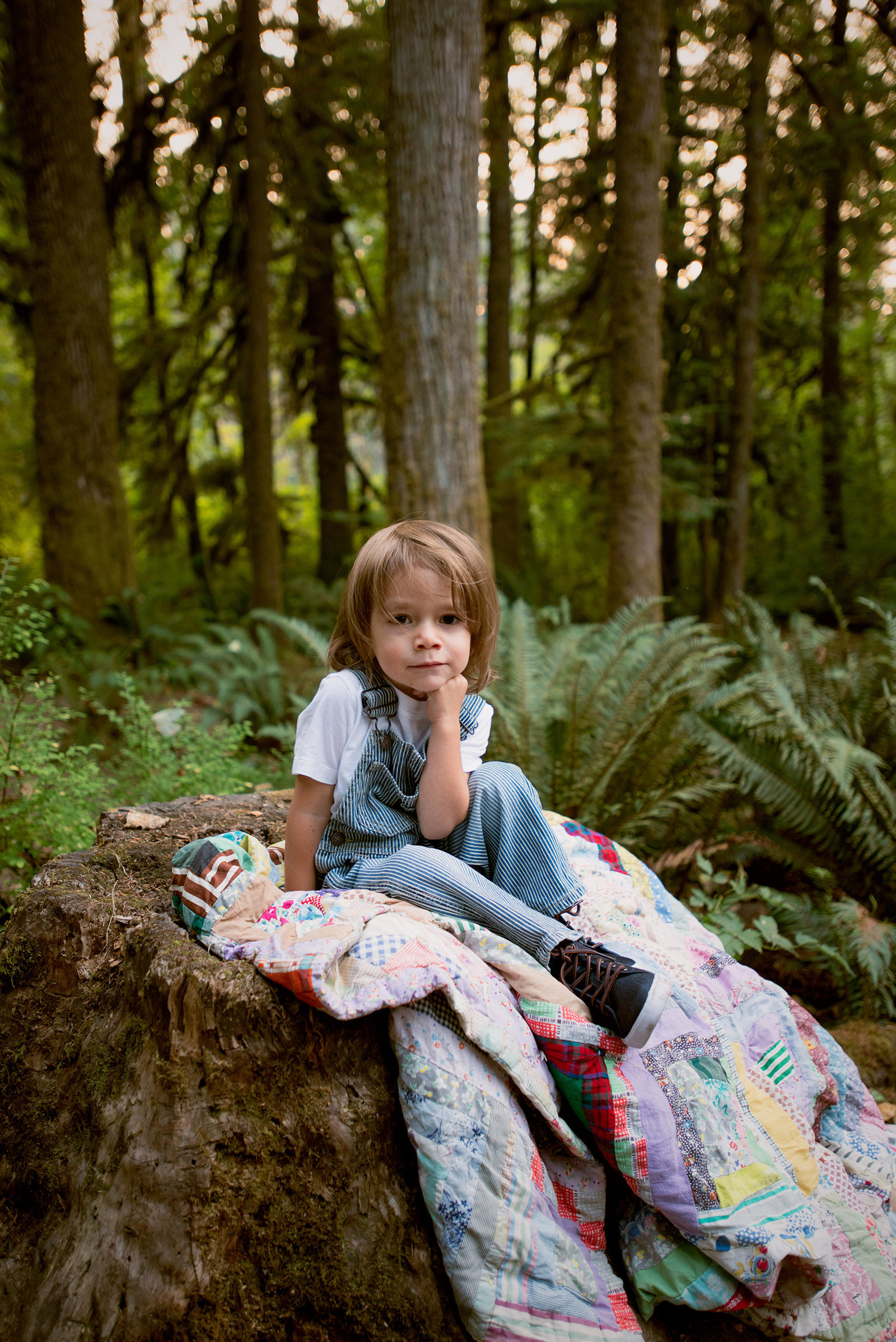 photo of a toddler boy in the woods in Bremerton, Washington