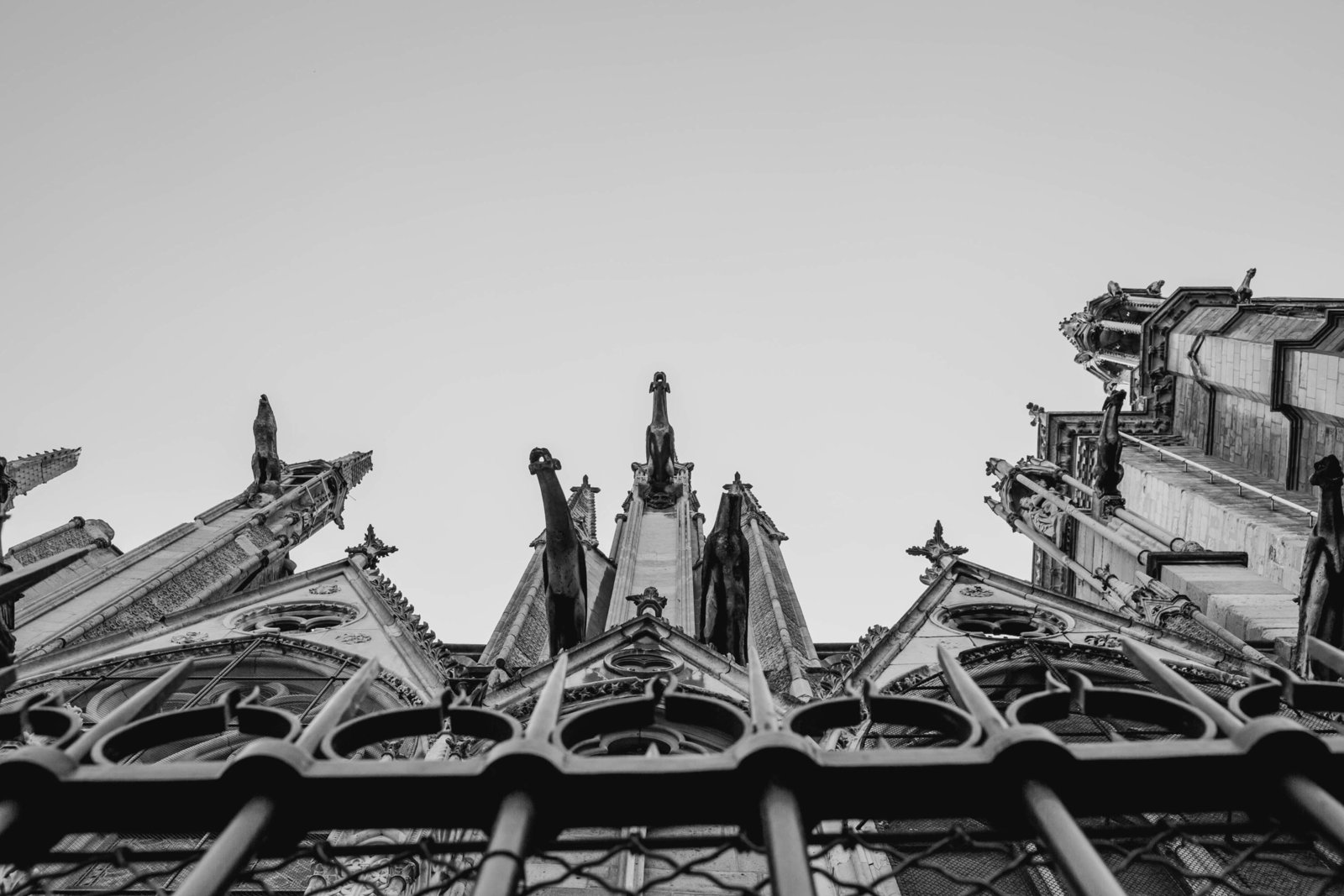 notre-dame-paris-france-travel-destination-wedding-kate-timbers-photography-1931