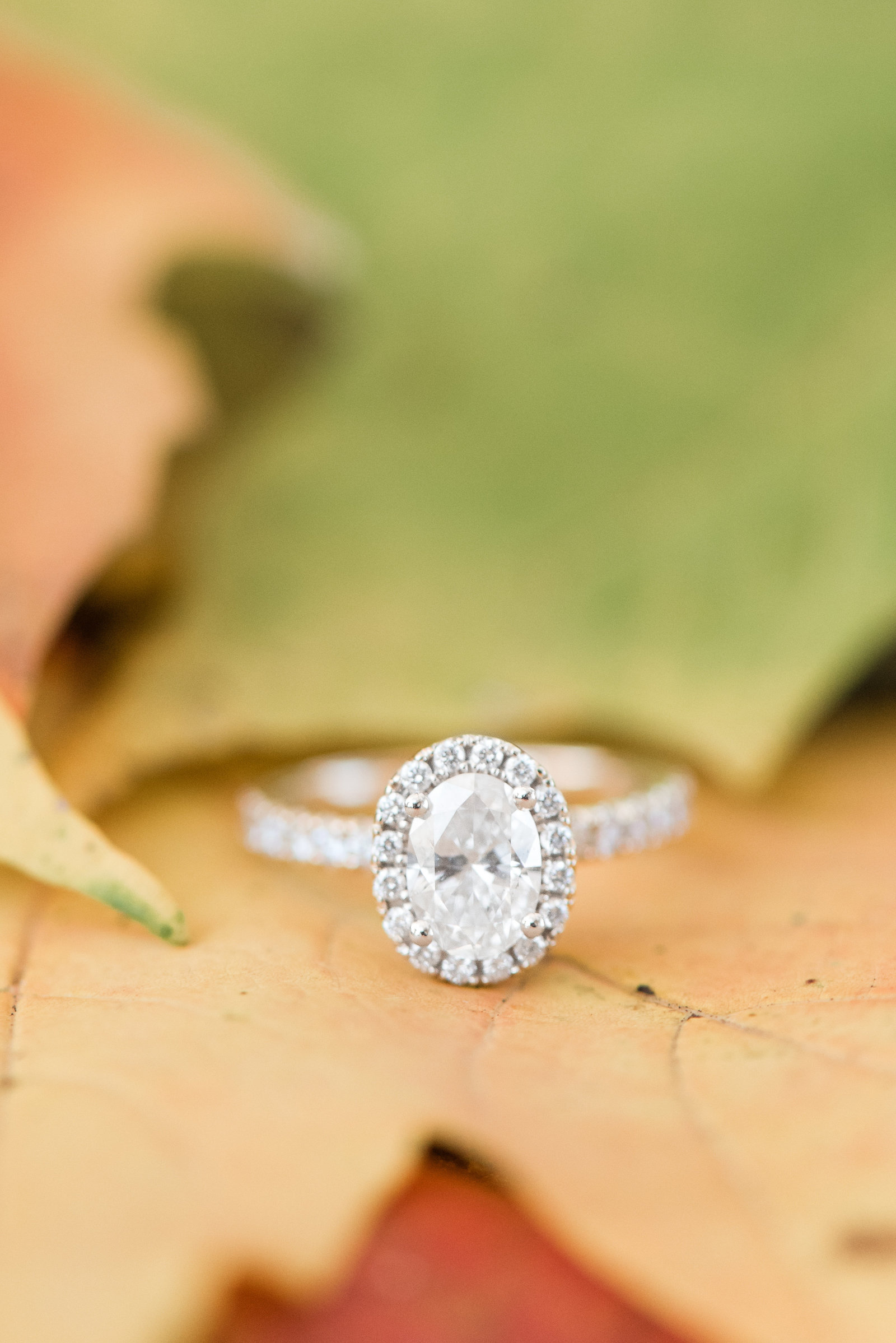 oval-diamond-engagement-ring-fall-leaves-photo849