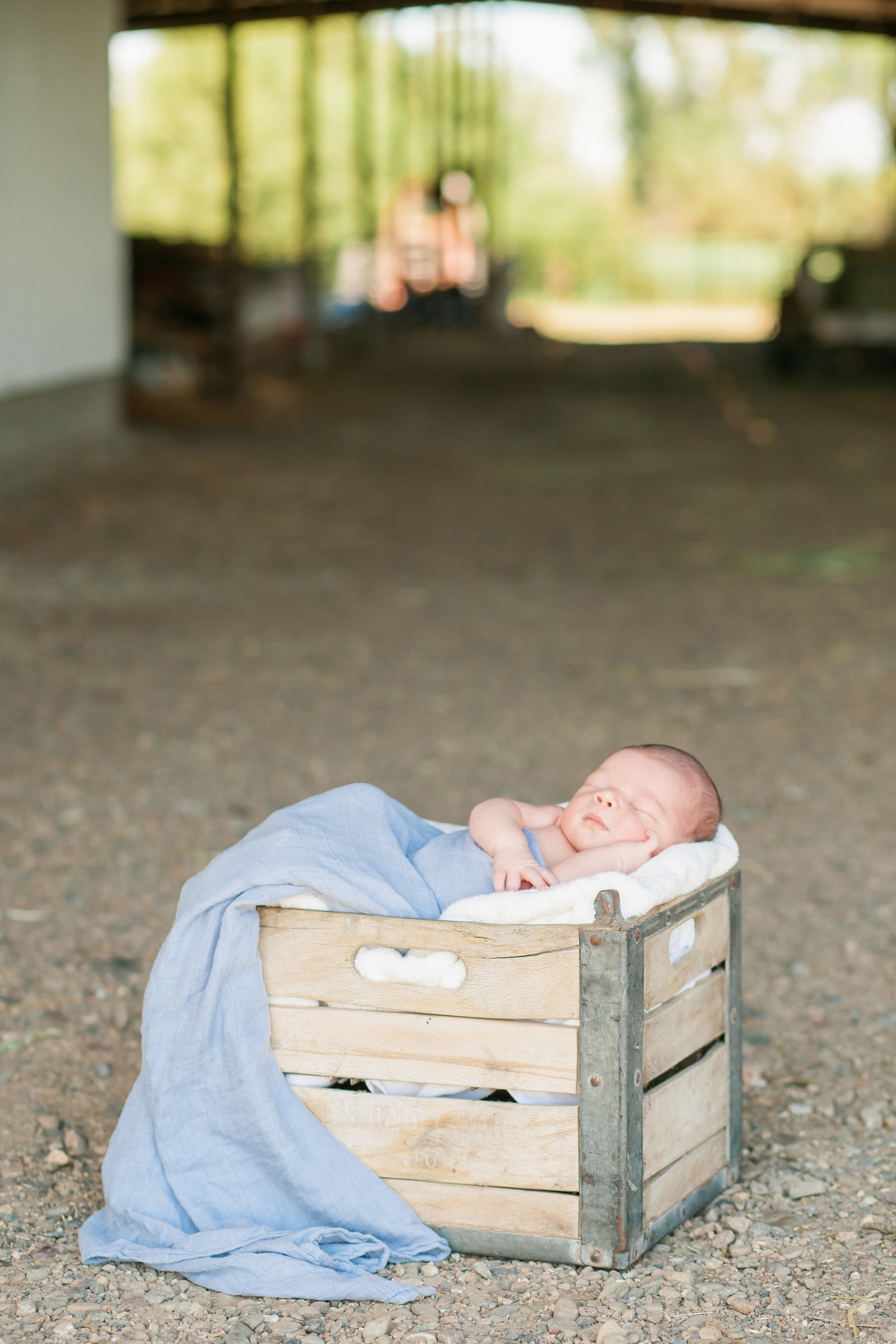 Cottonwood CA Newborn session baby in milk crate in barn