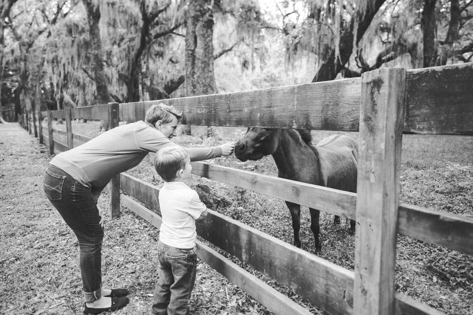Savannah Georgia - DiBlasio Photo-0148