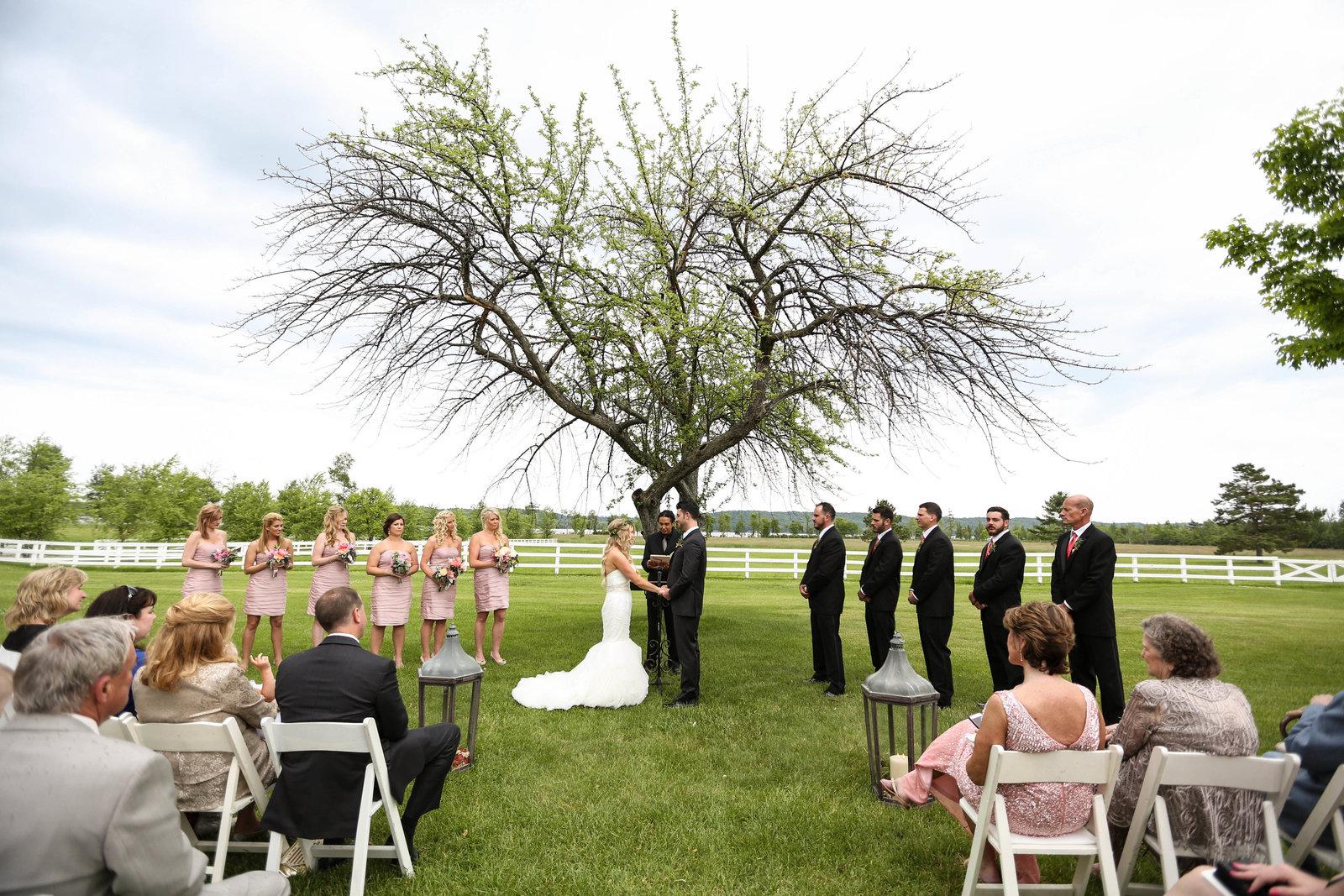 mike + allison wedding-382