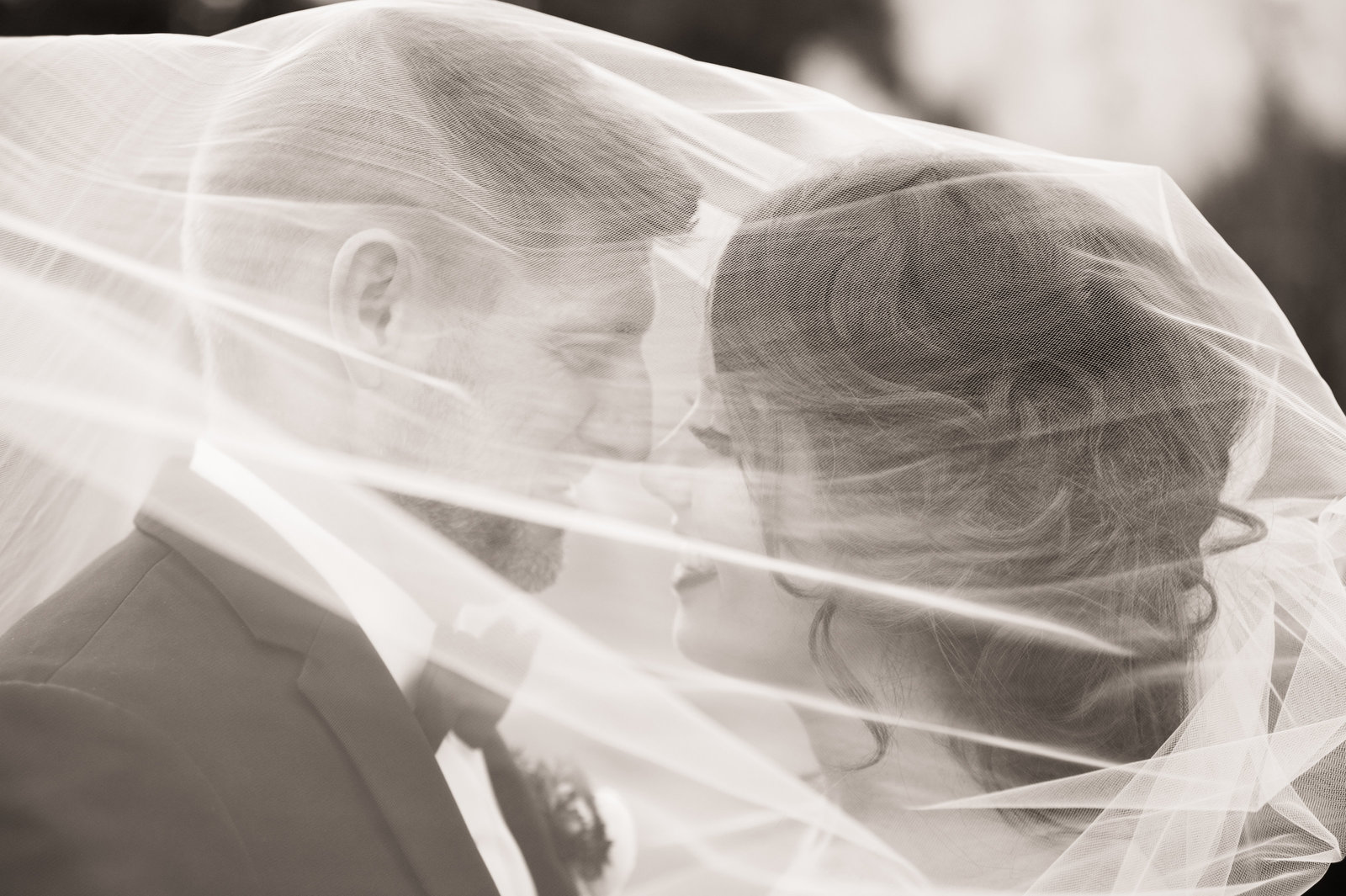 Bride and Groom snuggle under their wedding veil