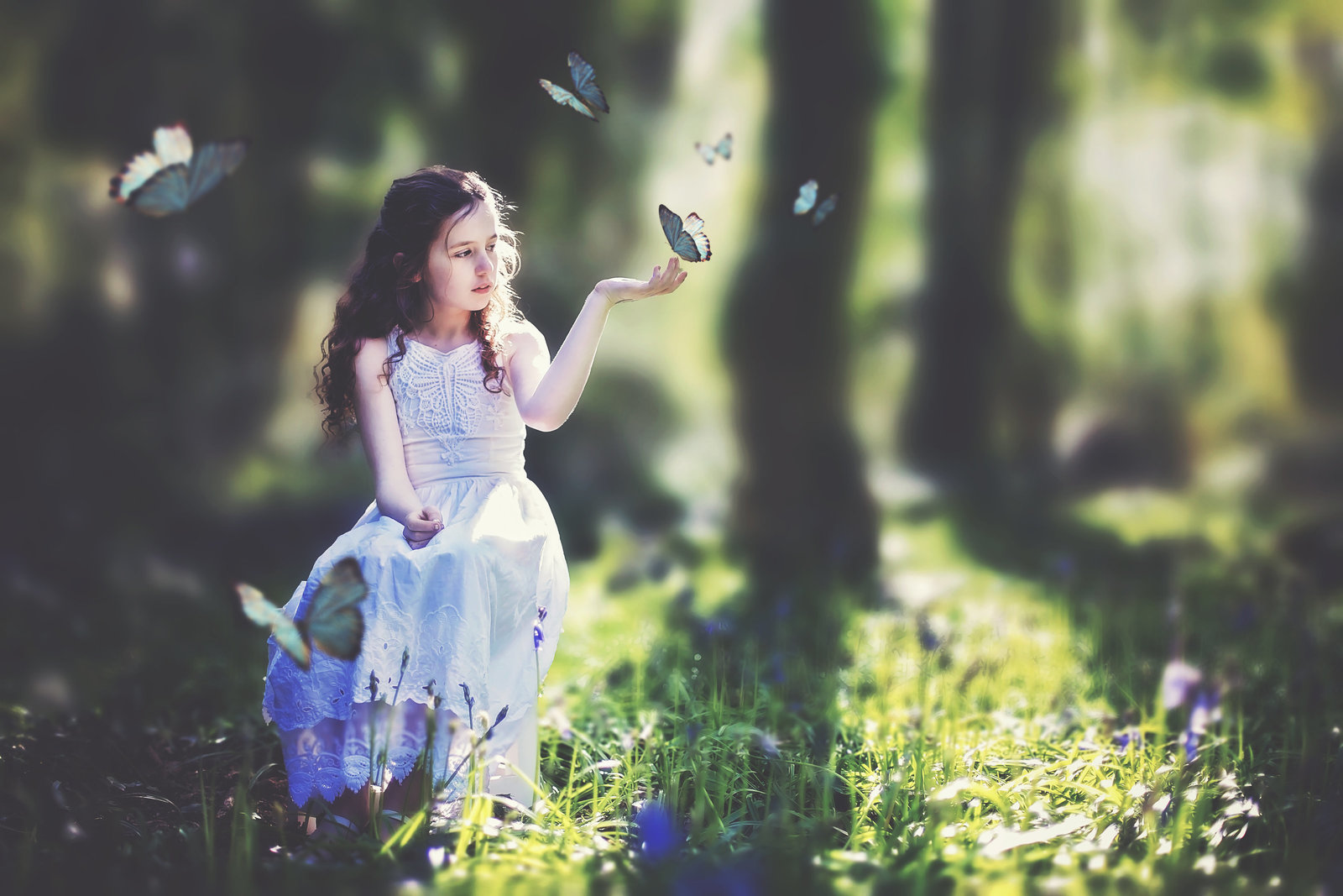 Norwich photographer Jessica Elisze photographs young girl with butterflies in the woods in Norfolk.