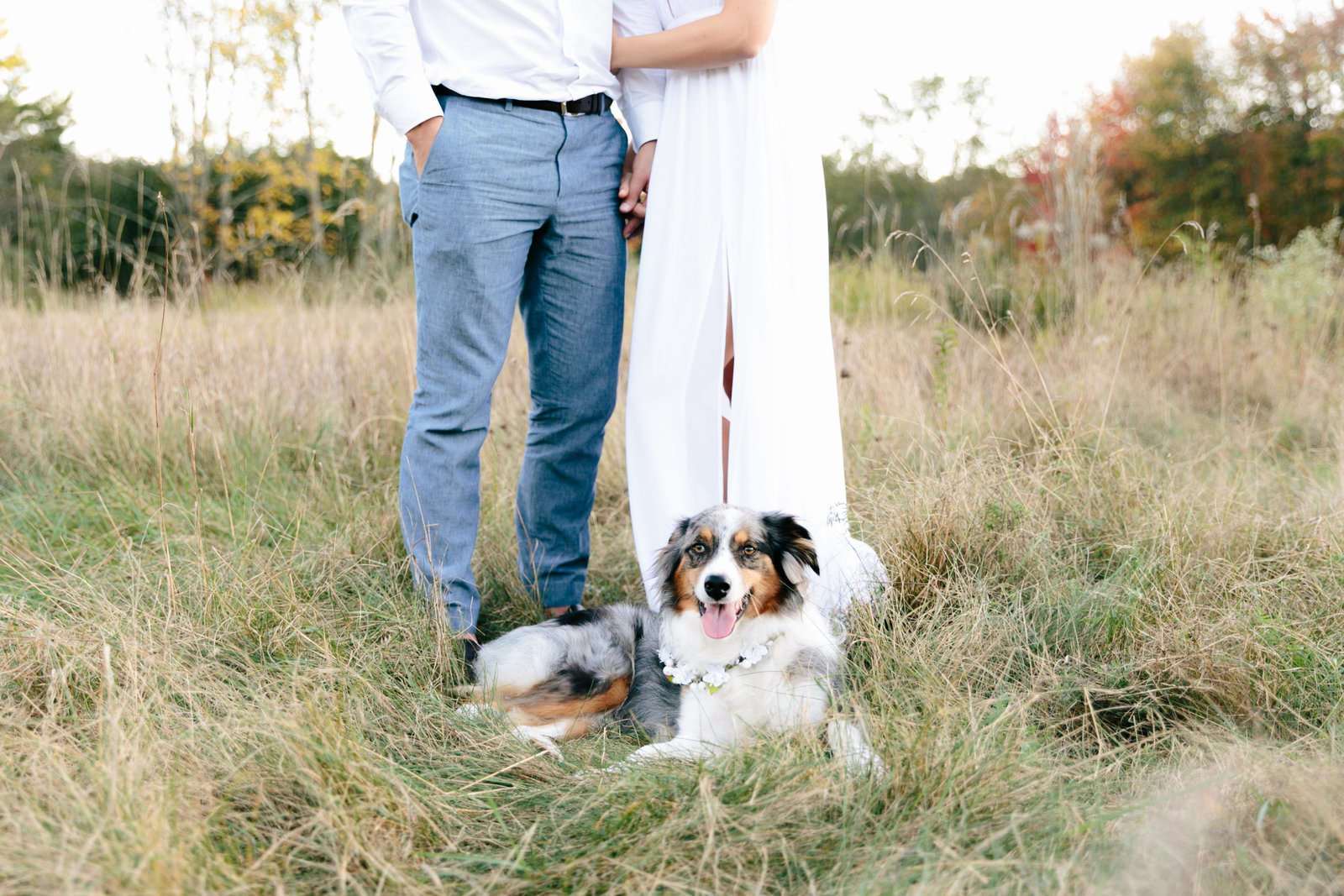 birchwold-farm-engagement-photography-wrentham-massachusetts0282