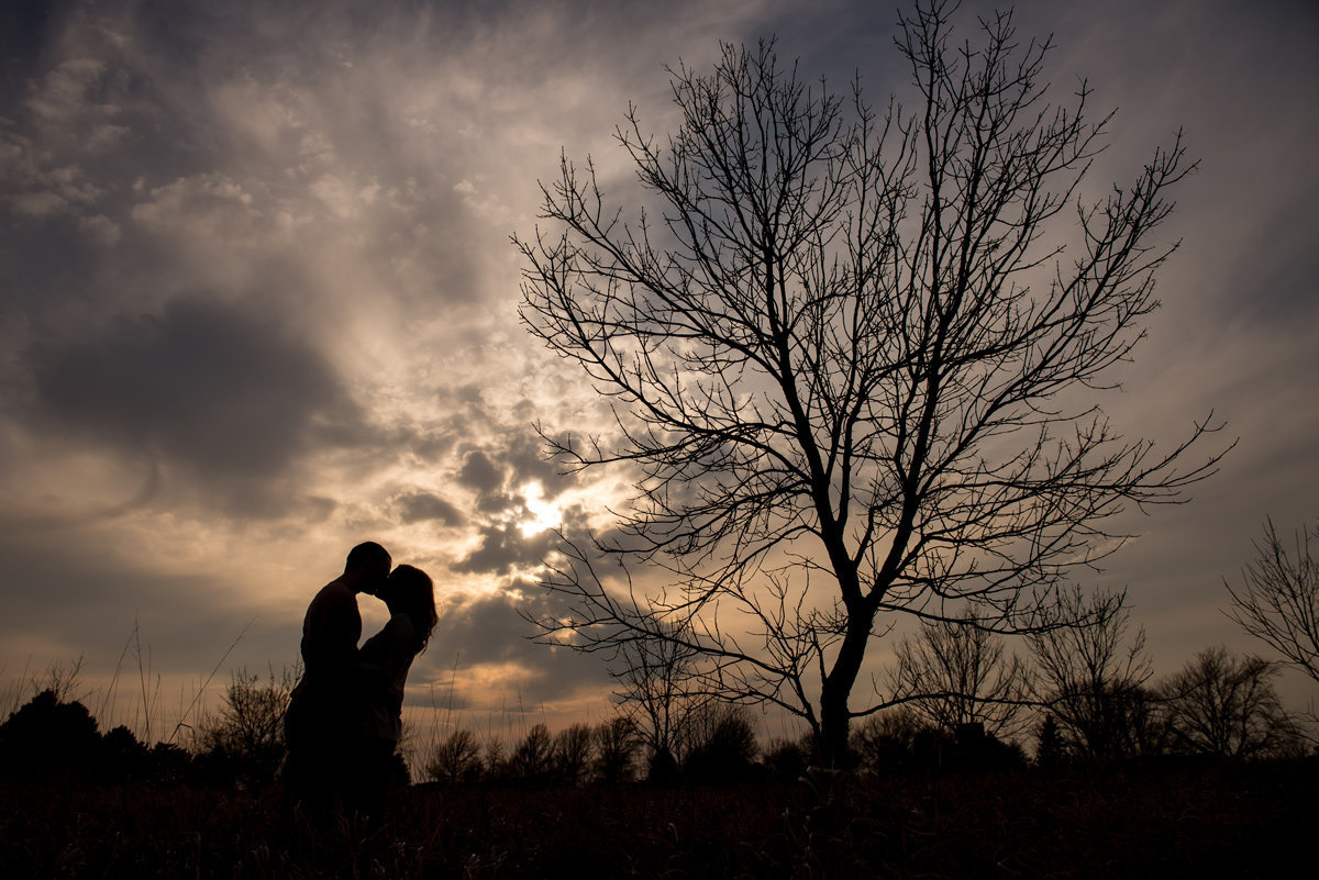 engagement-silhouette-tree